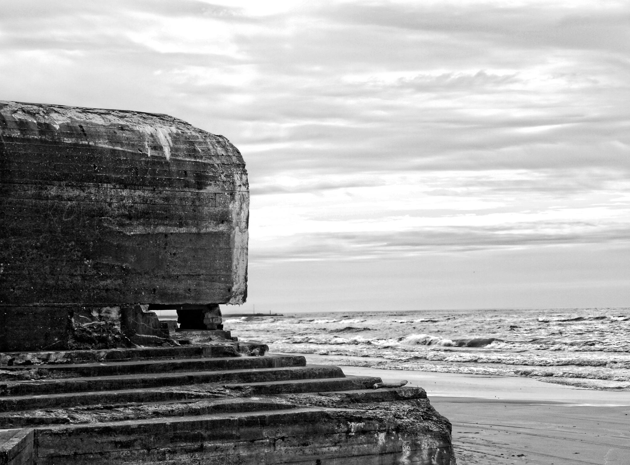 Coastal defense.. by Robert
