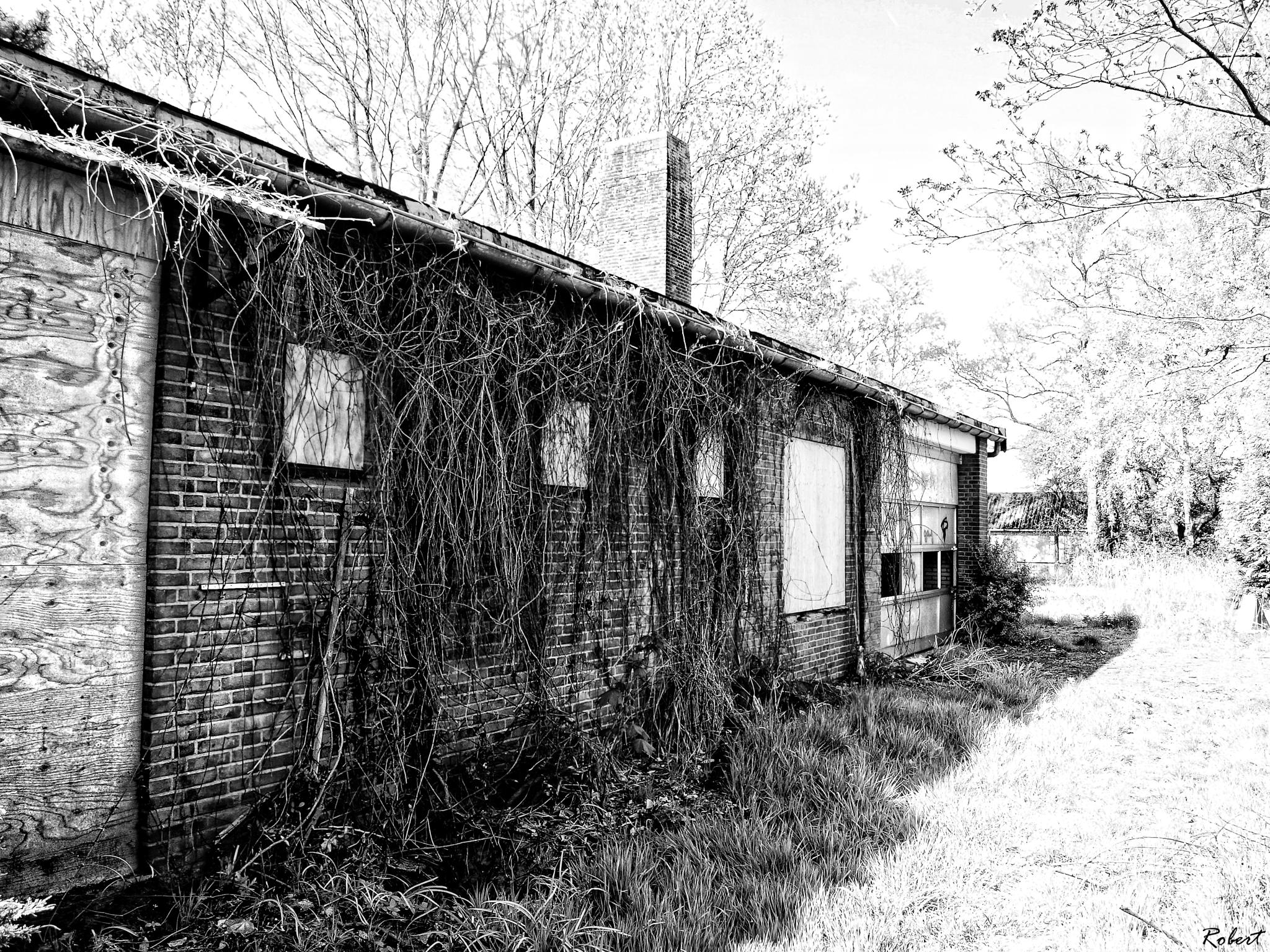 Abandon shed... by Robert