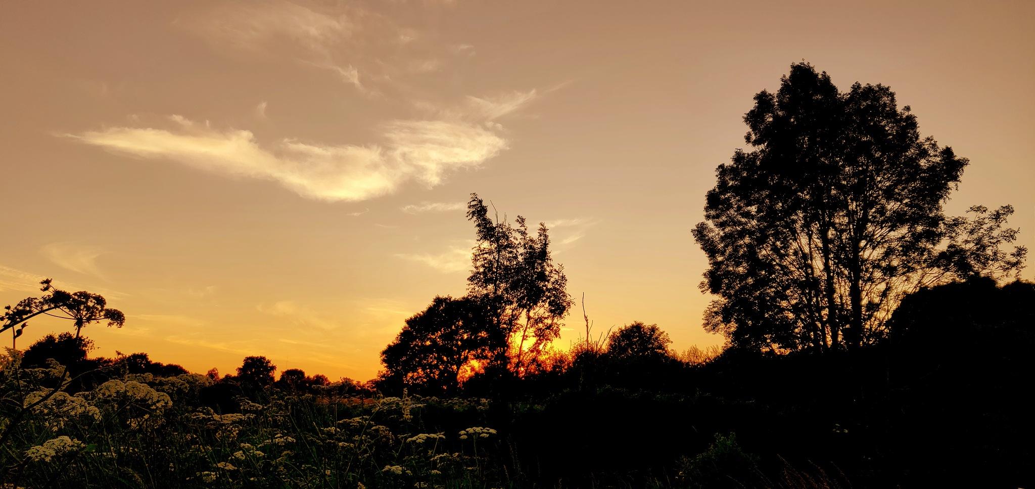Sun down... by Robert