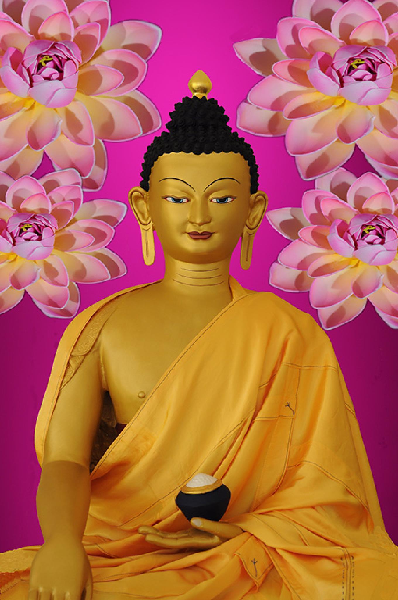 Shakyamuni by Francis Lappe