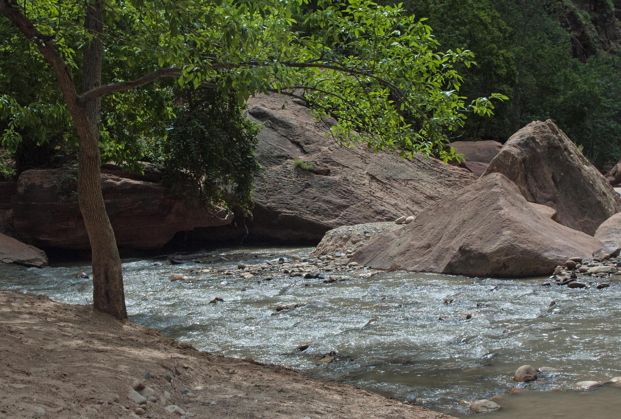 Rocks and Rapids by Brady Williams