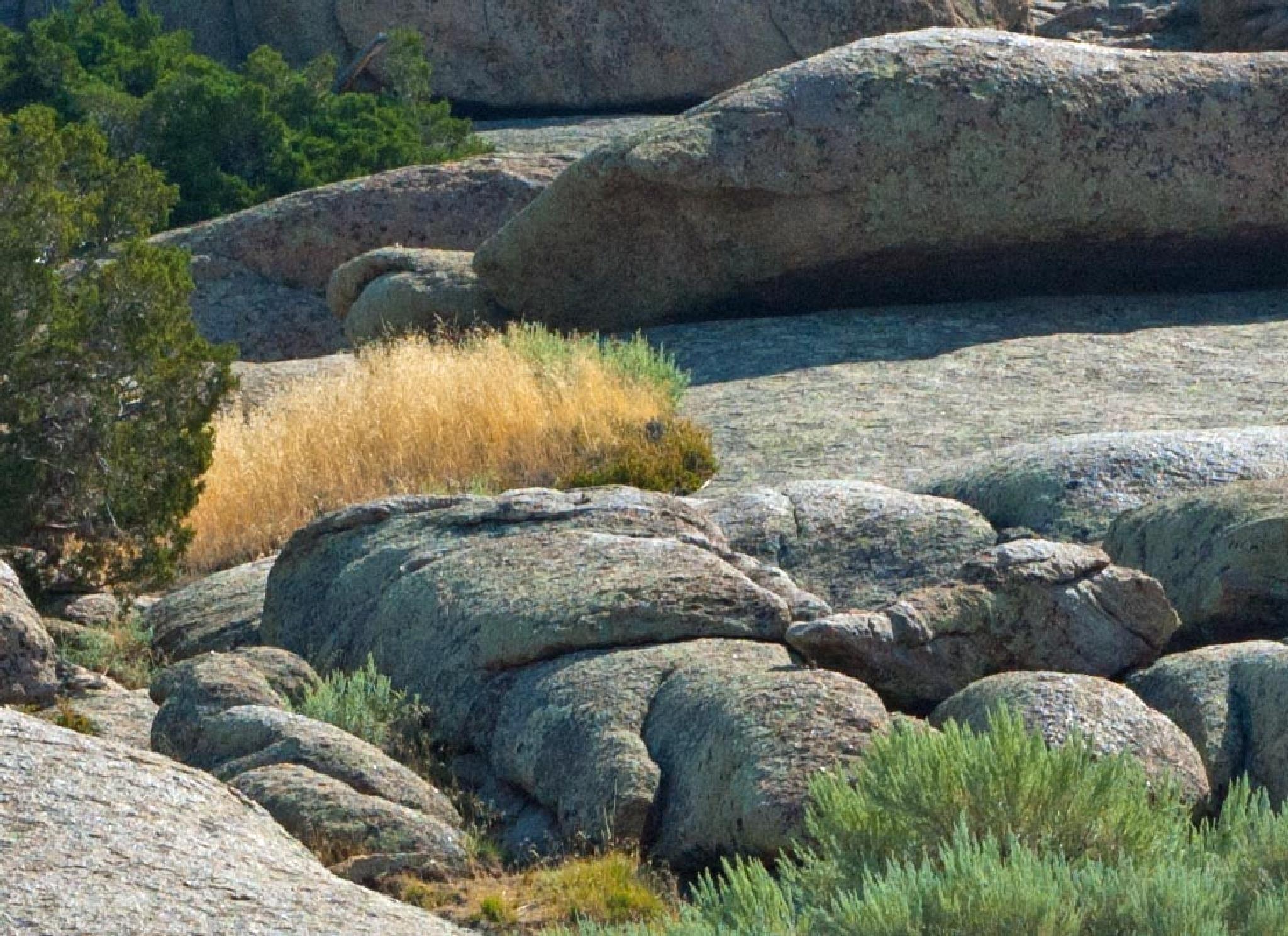 Rocks by Brady Williams