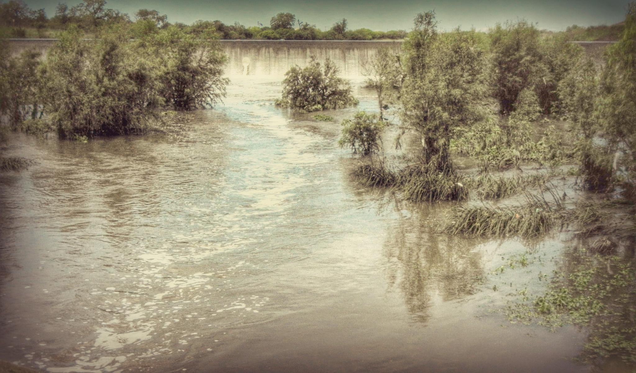 Texas Flood by 3dotstudio