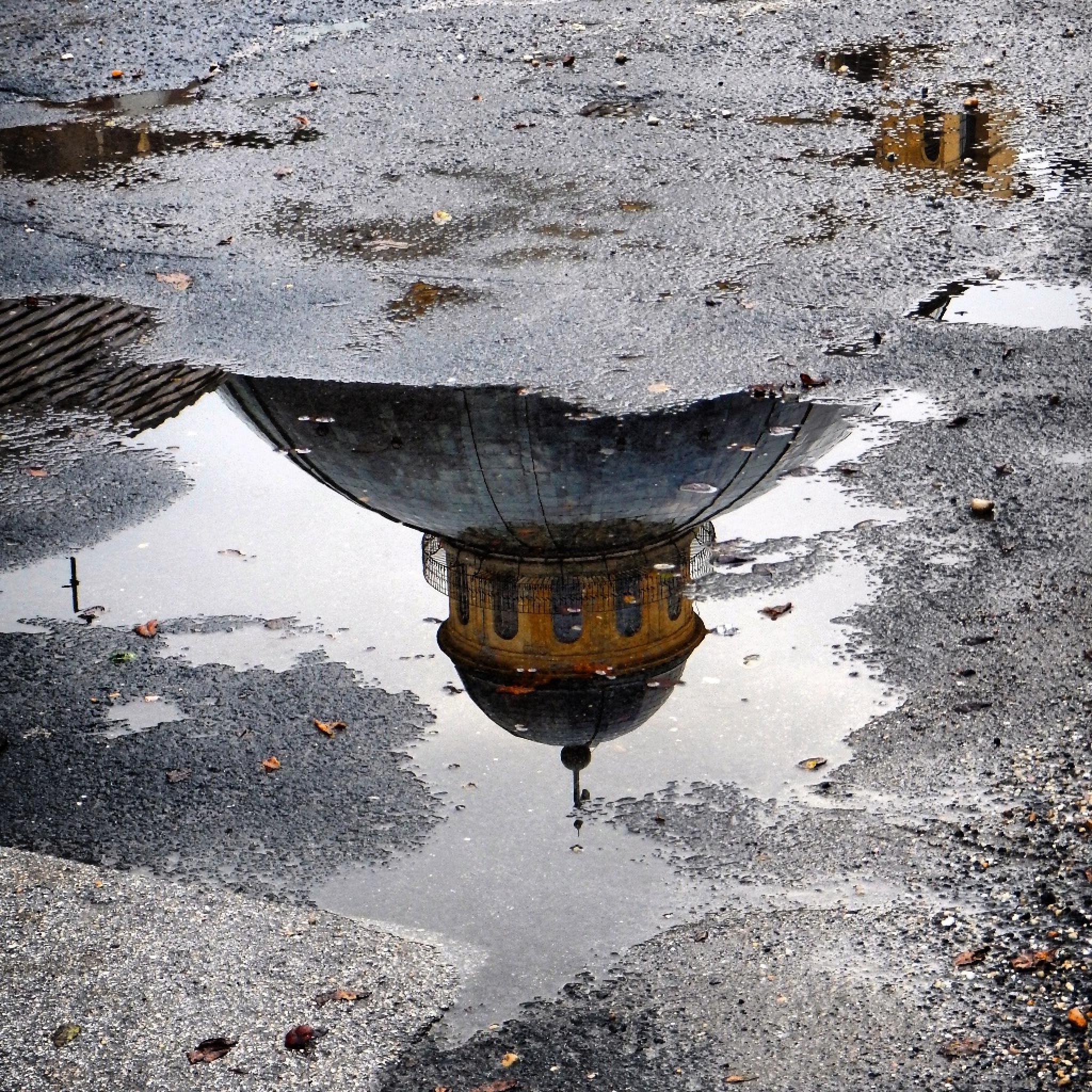 Reflection by Beták Anna