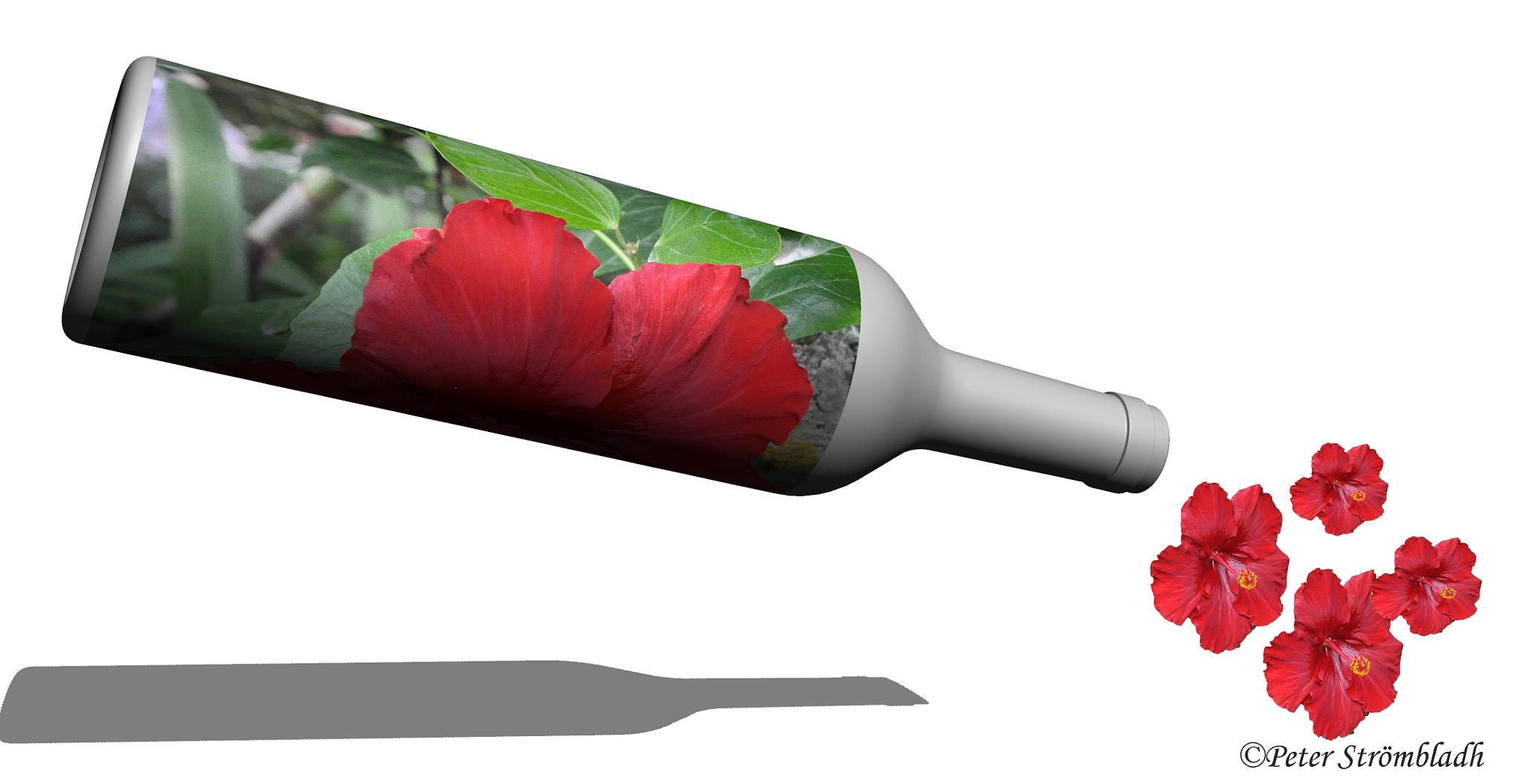Bottle with flowers by peter.strömbladh