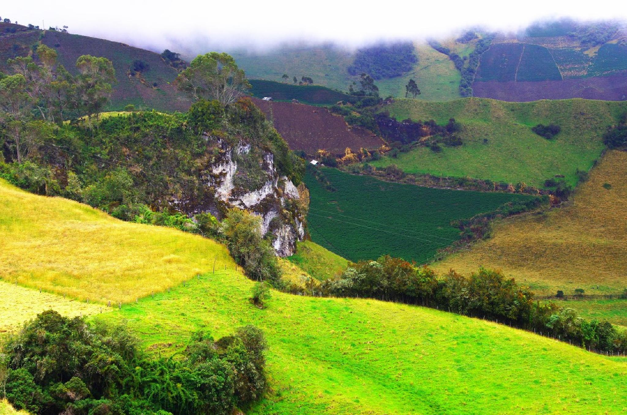 Farms in the high colombian Andes by Dan Steeves
