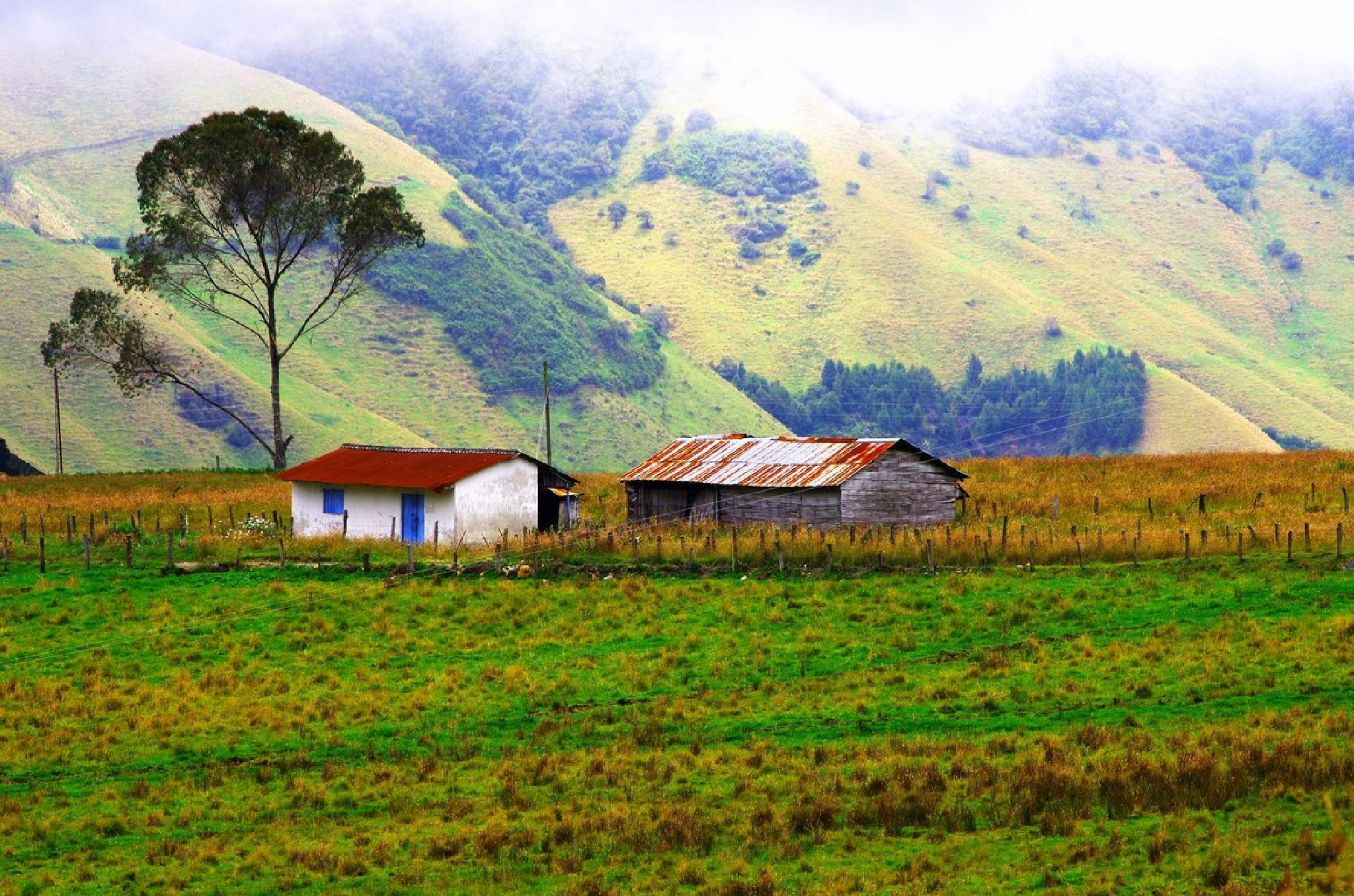 Little farmhouse in the Andes by Dan Steeves
