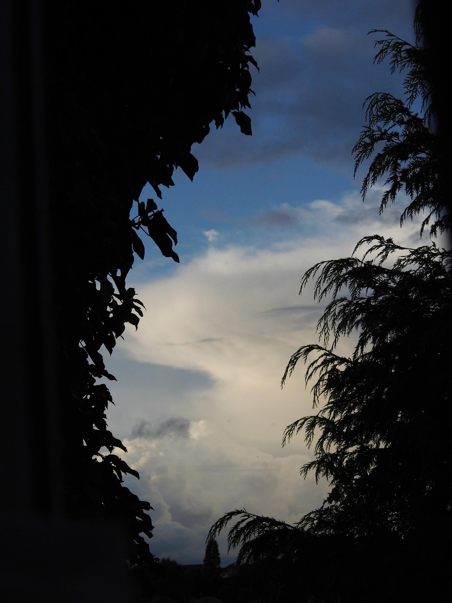 moody sky by Naomi D Tillotson-Keating