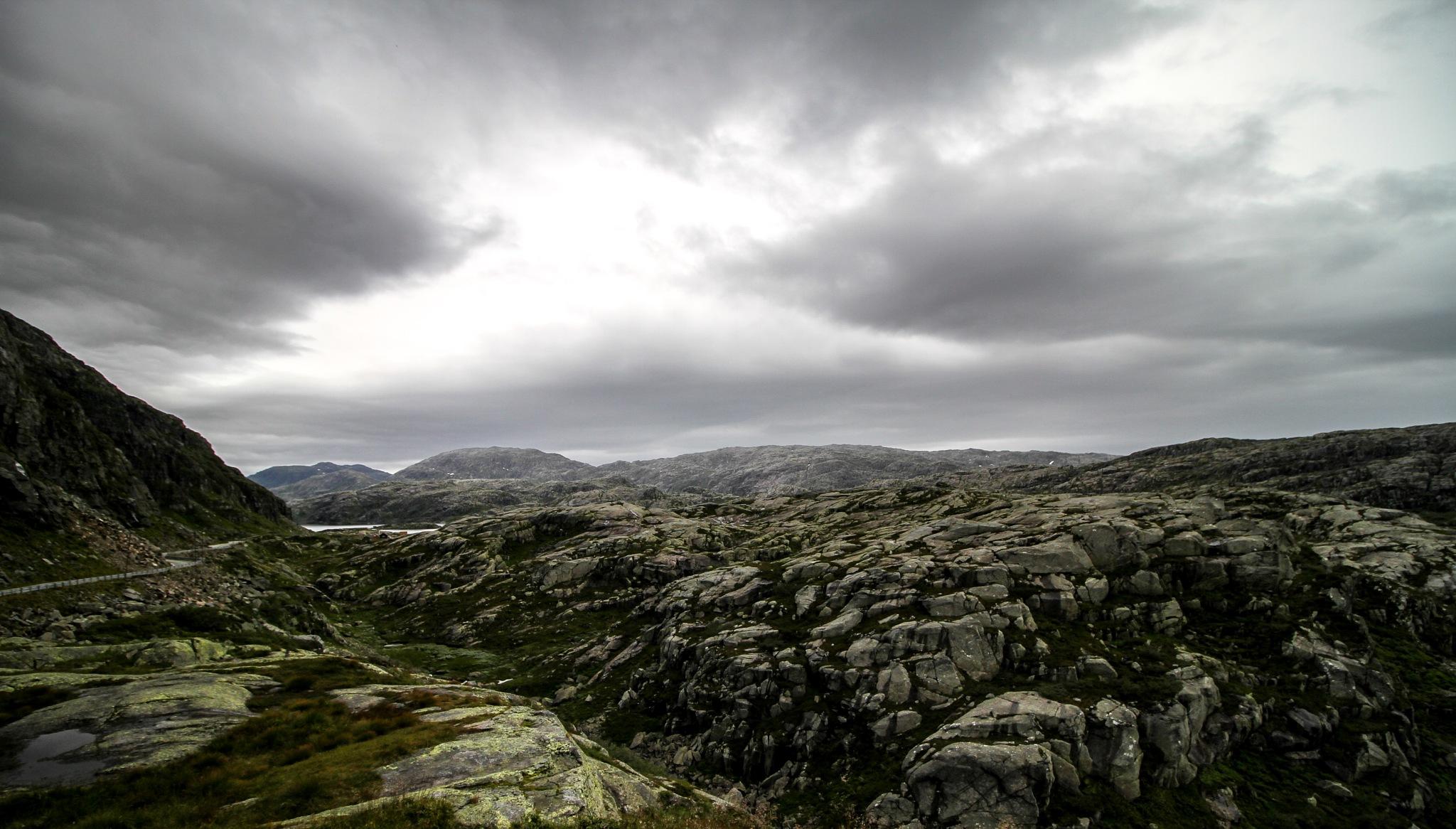 Norway  by Steve Guessoum