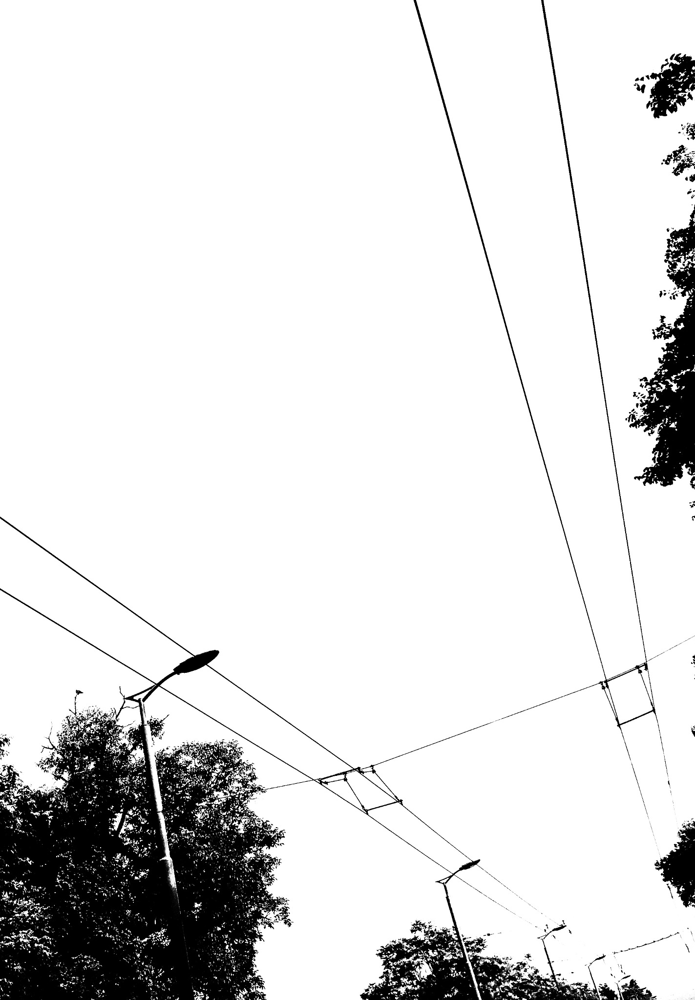 #abovemyhead by Anne Marie Alves-Curcic
