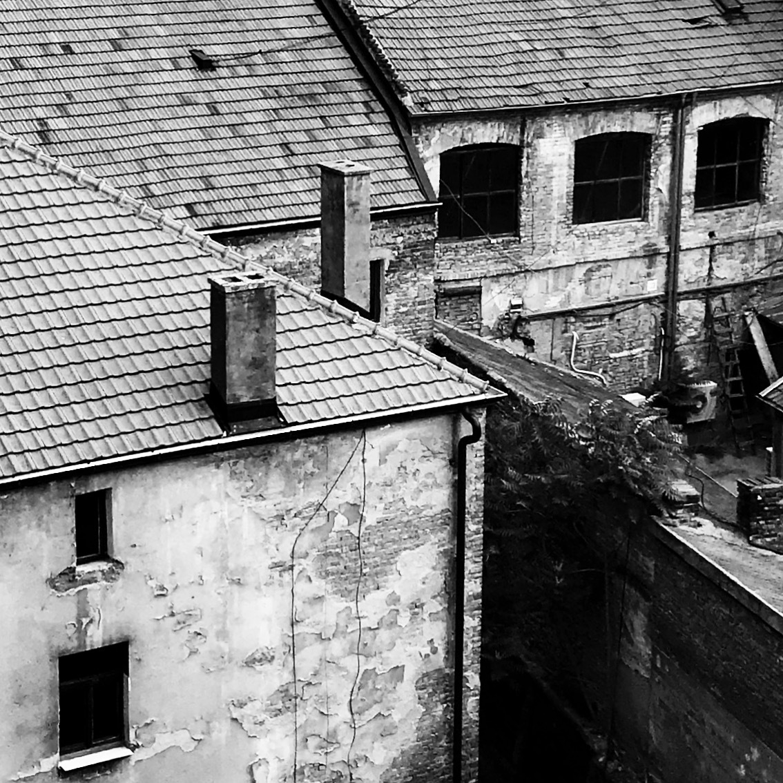 #roofs by Anne Marie Alves-Curcic
