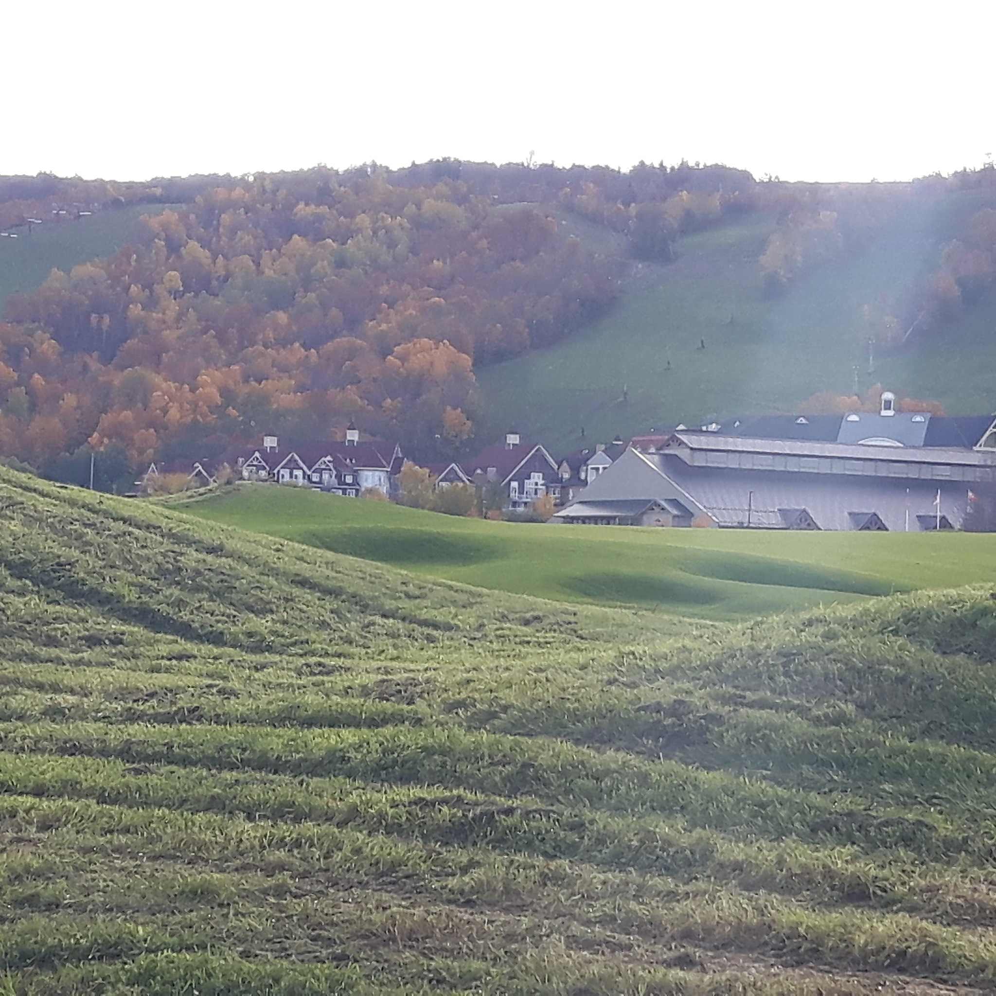 Ski hills in the fall by HarleyBaby1974