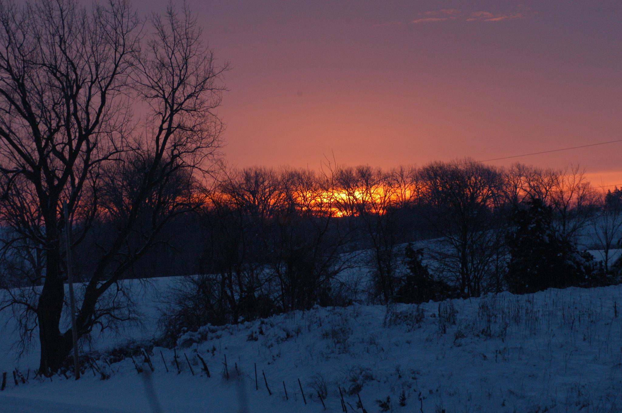 February Sunrise by lgrismore