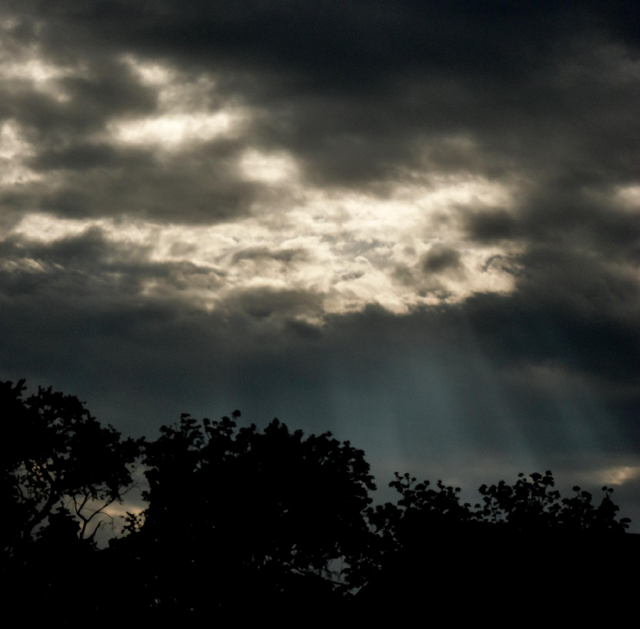 Sun Rays by nancy.mitchell3