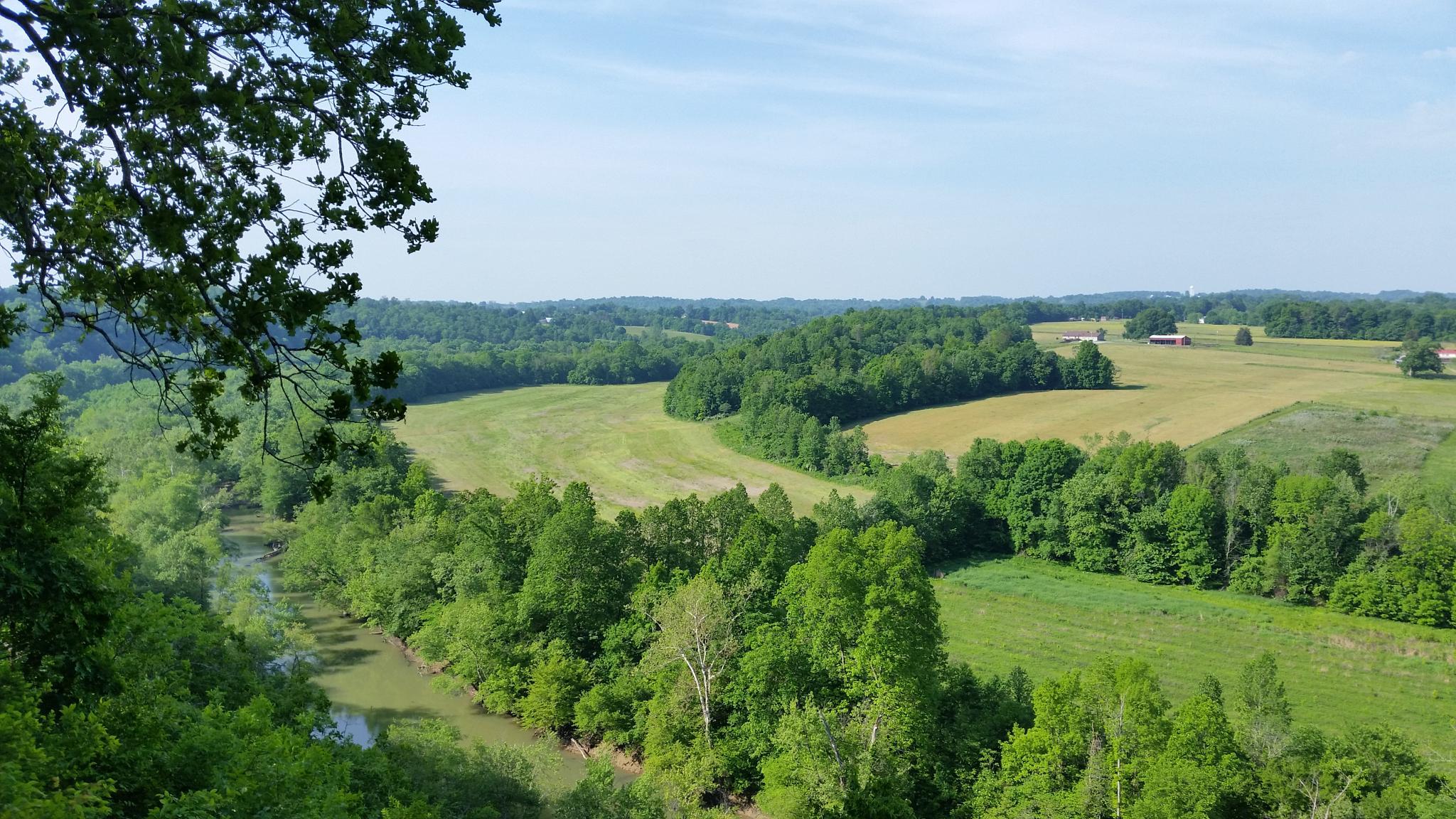Green River Lake Stream - Campbellsville, Kentucky by Quentin den Braber
