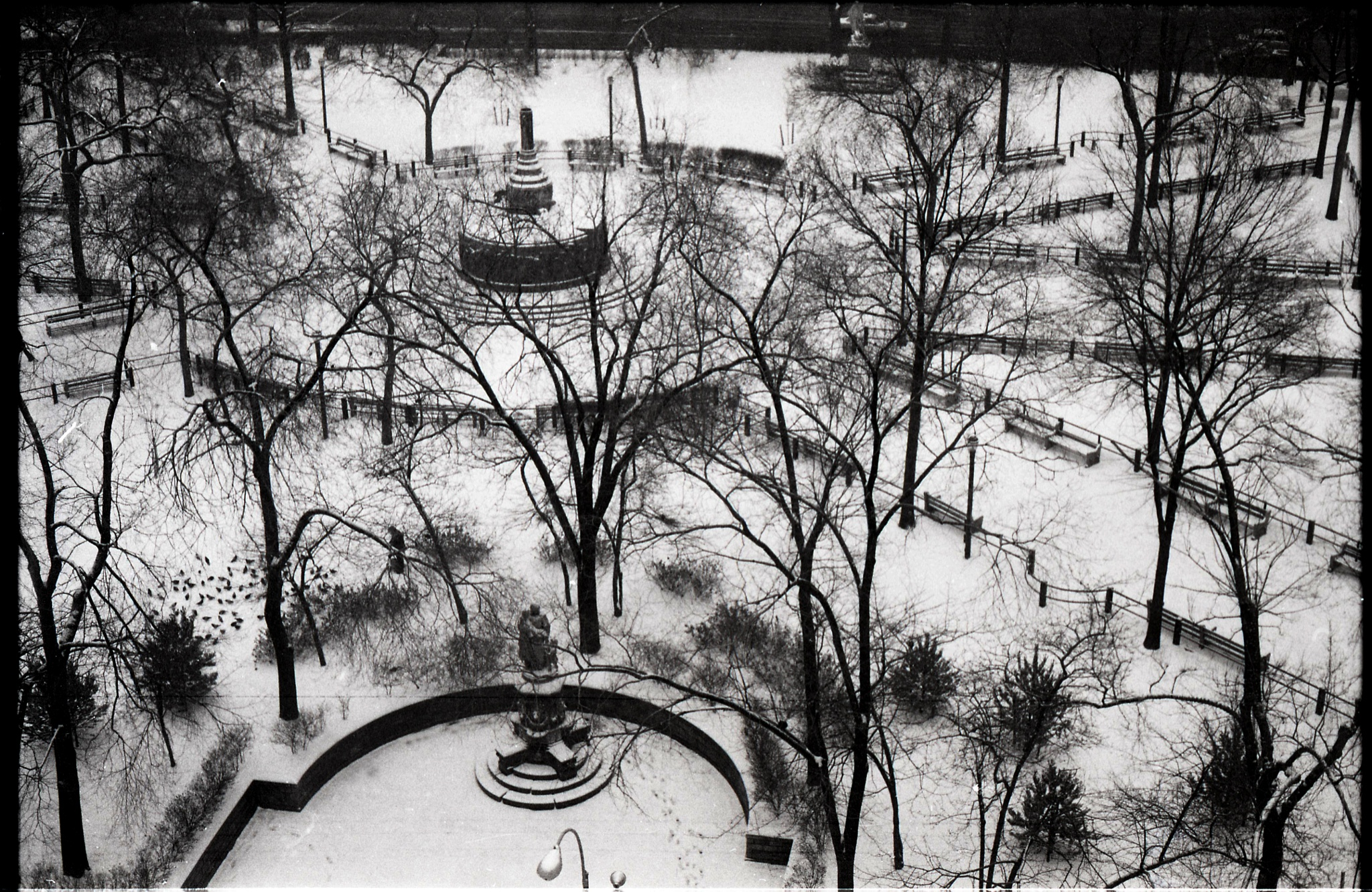 Union square Park from aboveBird feeder by pedro.abreu.98096
