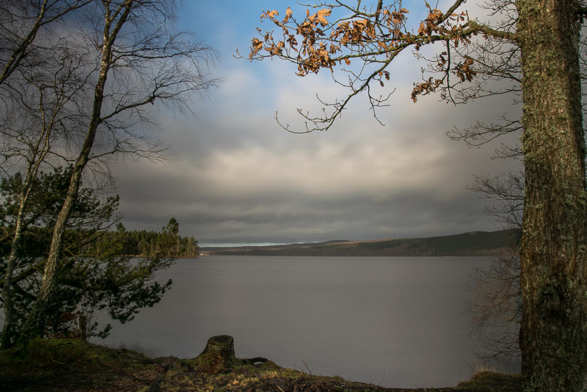 Västersjön by Peppelini
