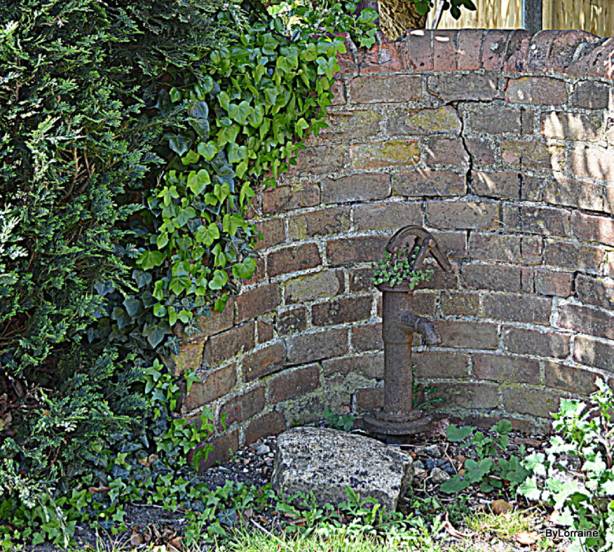 Old Water pump by Lorraine. Sgt