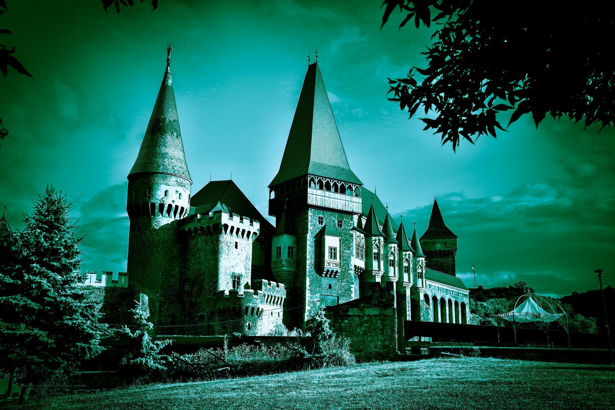 Castele Hunedoara by Mihai Sirb