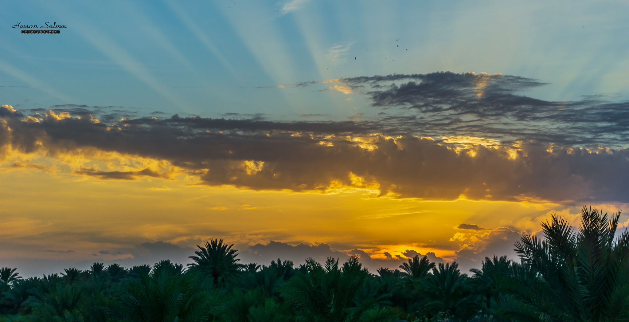 sunset form karbala by hassansalman
