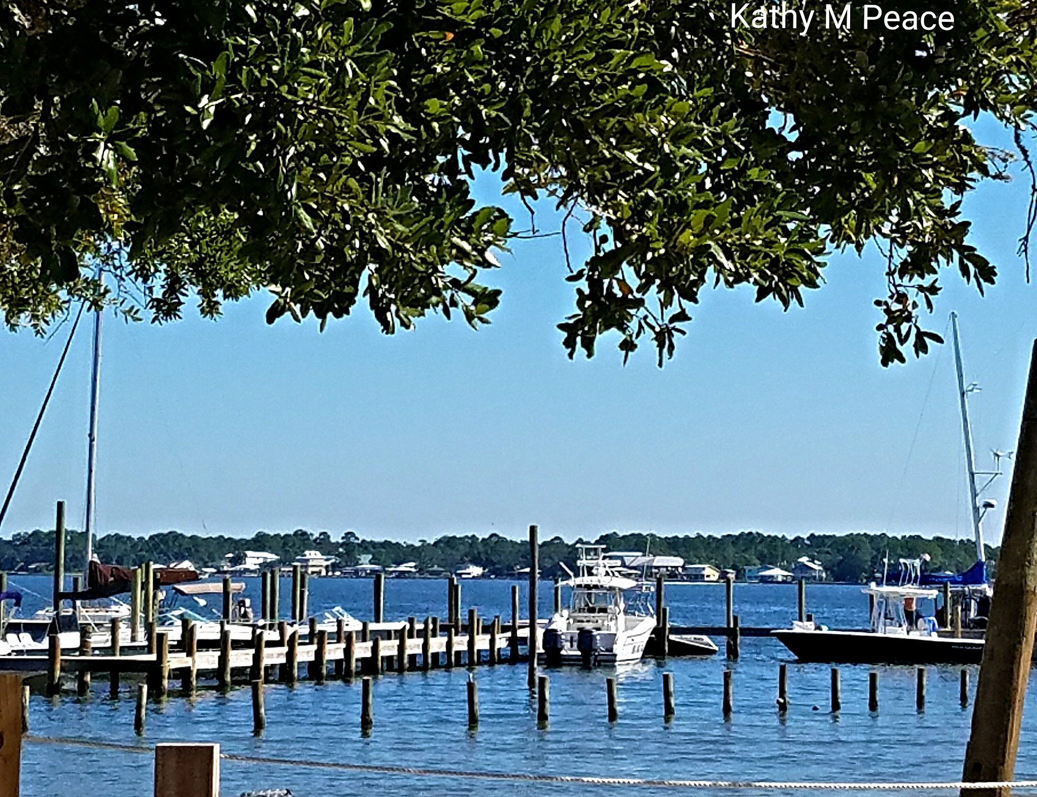 Pirate's Cove  by kathy.peace.3