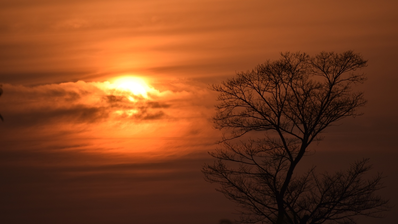 Sunset... by Satya