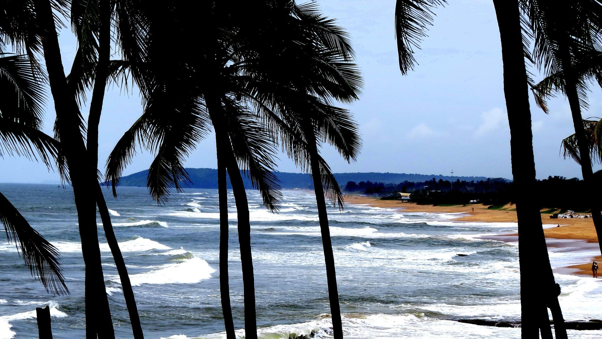 Sea Shore.. by Satya