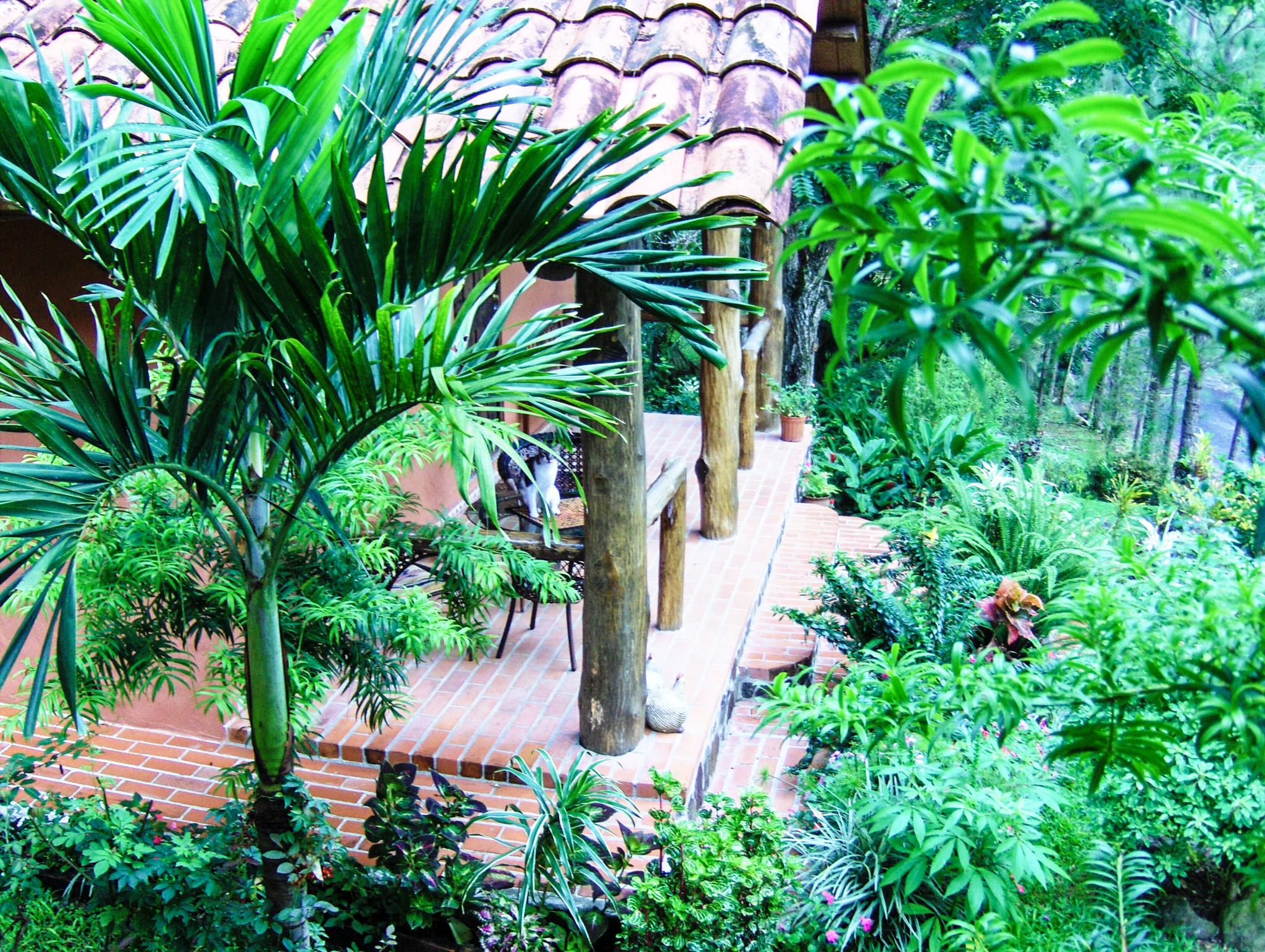 View From Our Cabin in Altos del Maria, Panama by Larry Berman