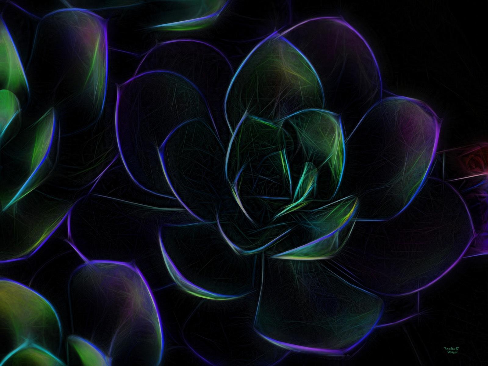 Dark Succlent by LyleT