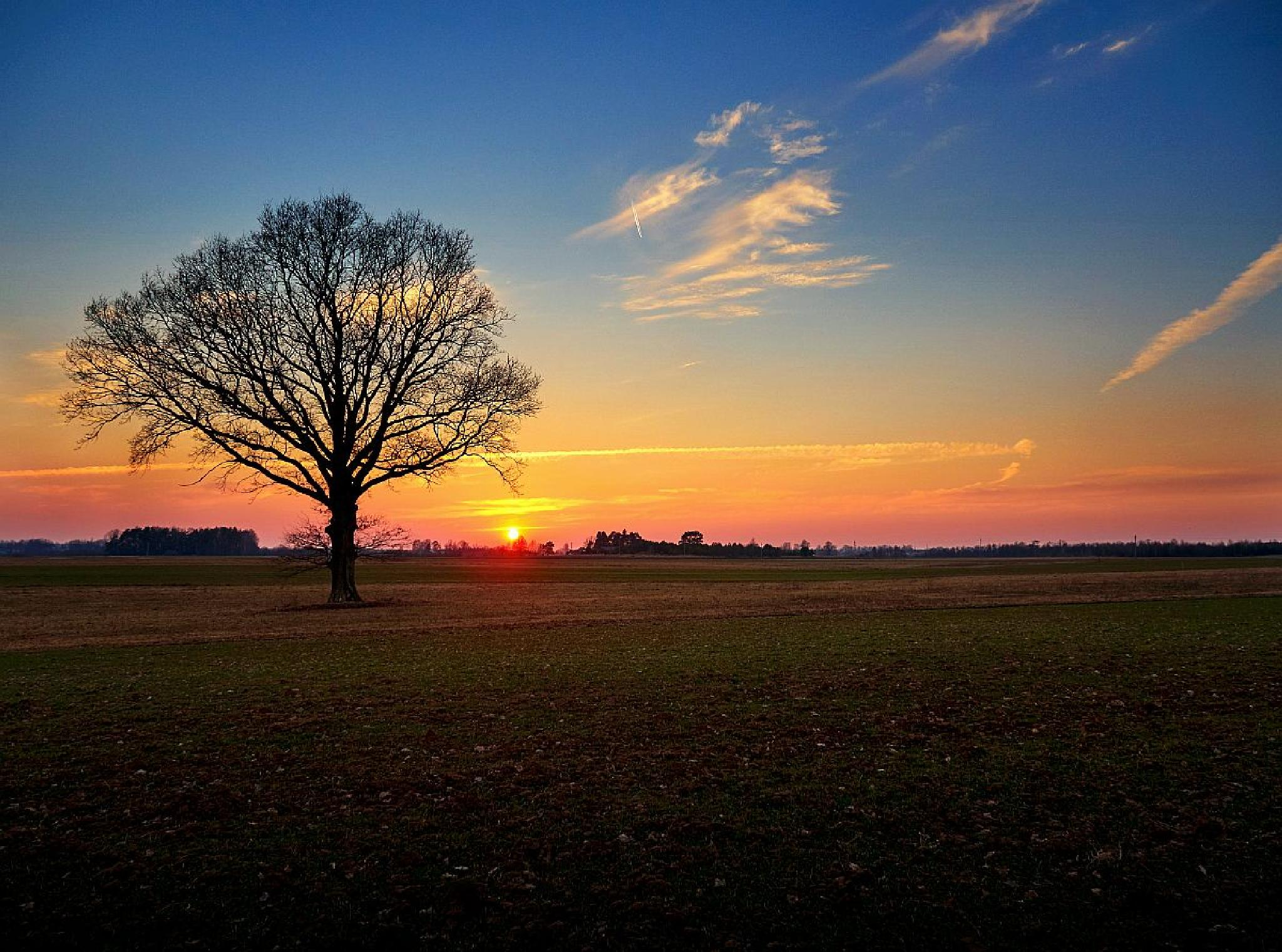 Sunset in March by Almantas B