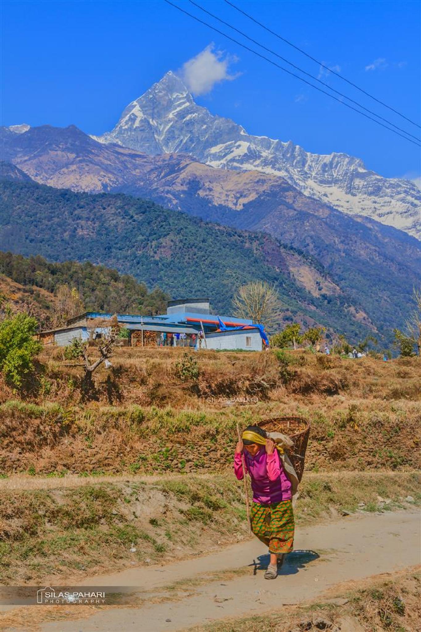 Nepali Life Style नेपाली जिवन शैली  by Silas Pahari