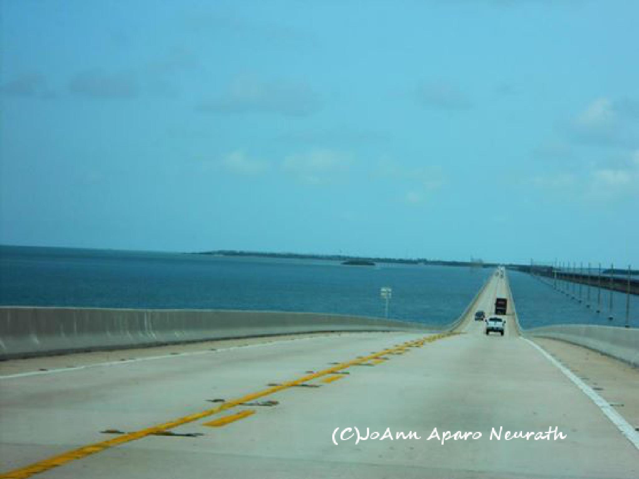 7 Mile Bridge, Florida Keys by JoAnn.Aparo.Neurath