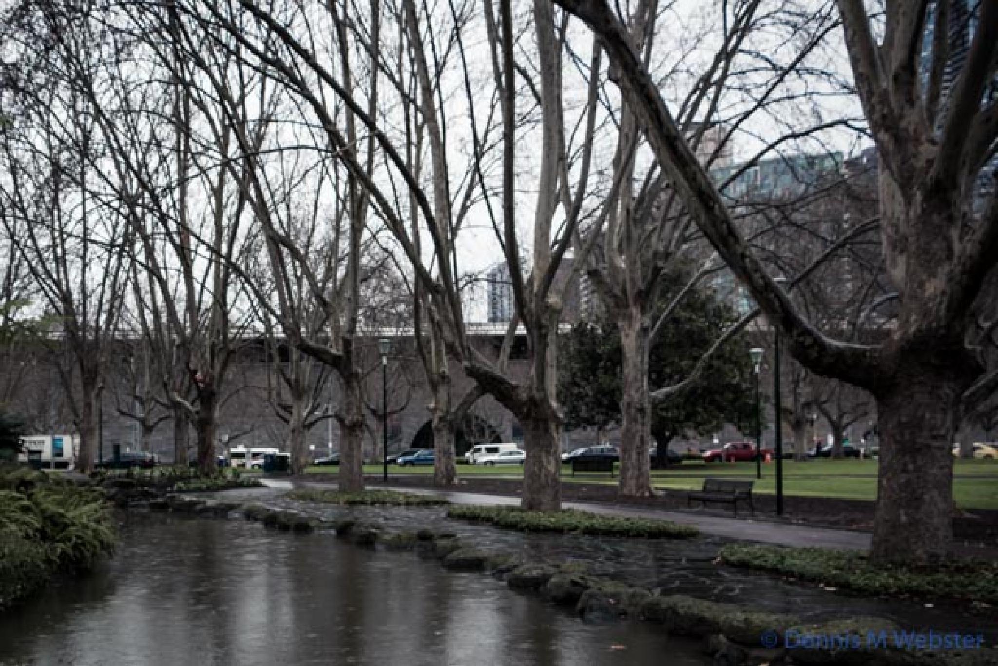 Photo in Cityscape #alexandra gardens #melbourne #cold #wet #winter #ngv #victoria