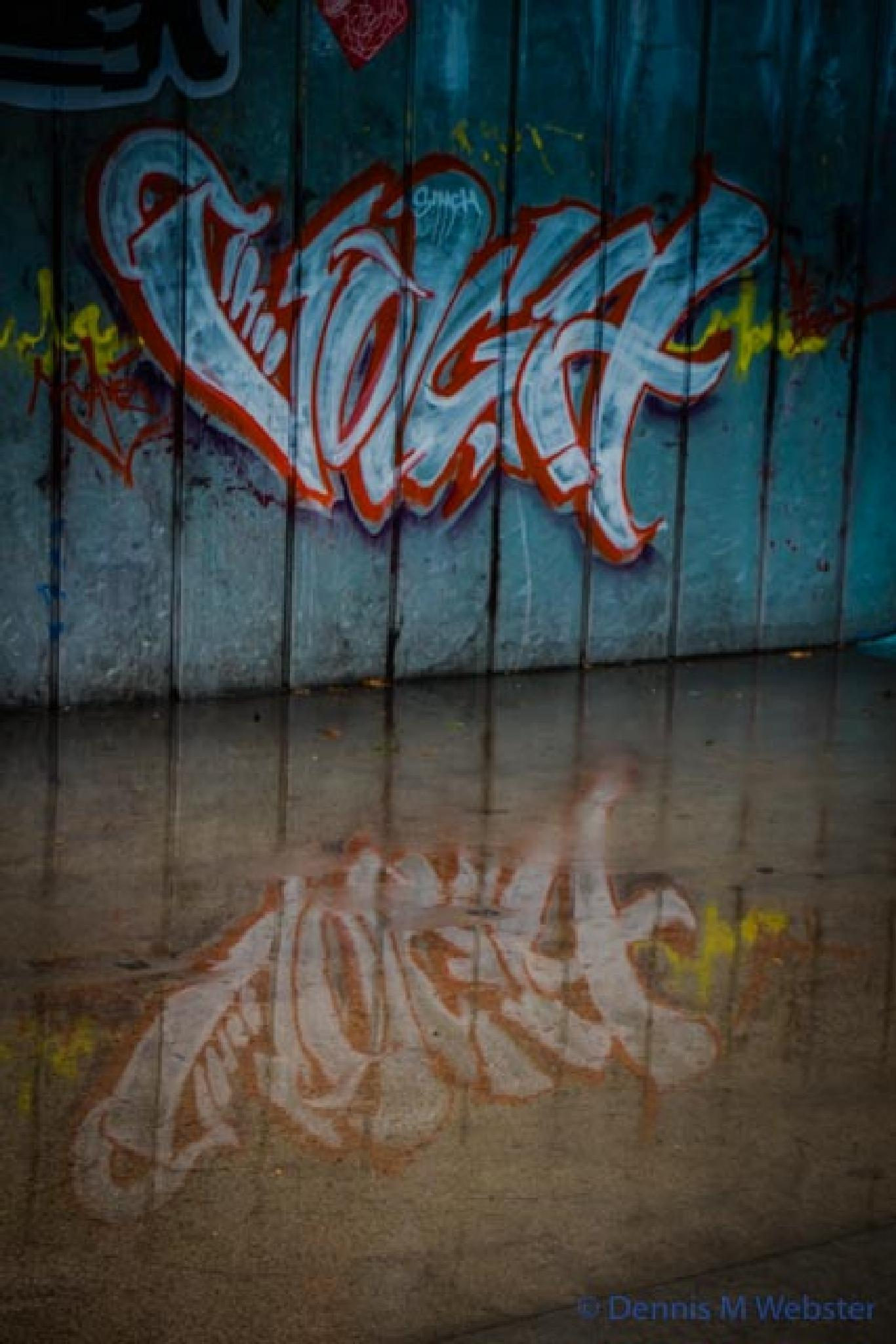 Photo in Urban #alexandra gardens #melbourne #cold #wet #winter #graffiti #tag #reflection