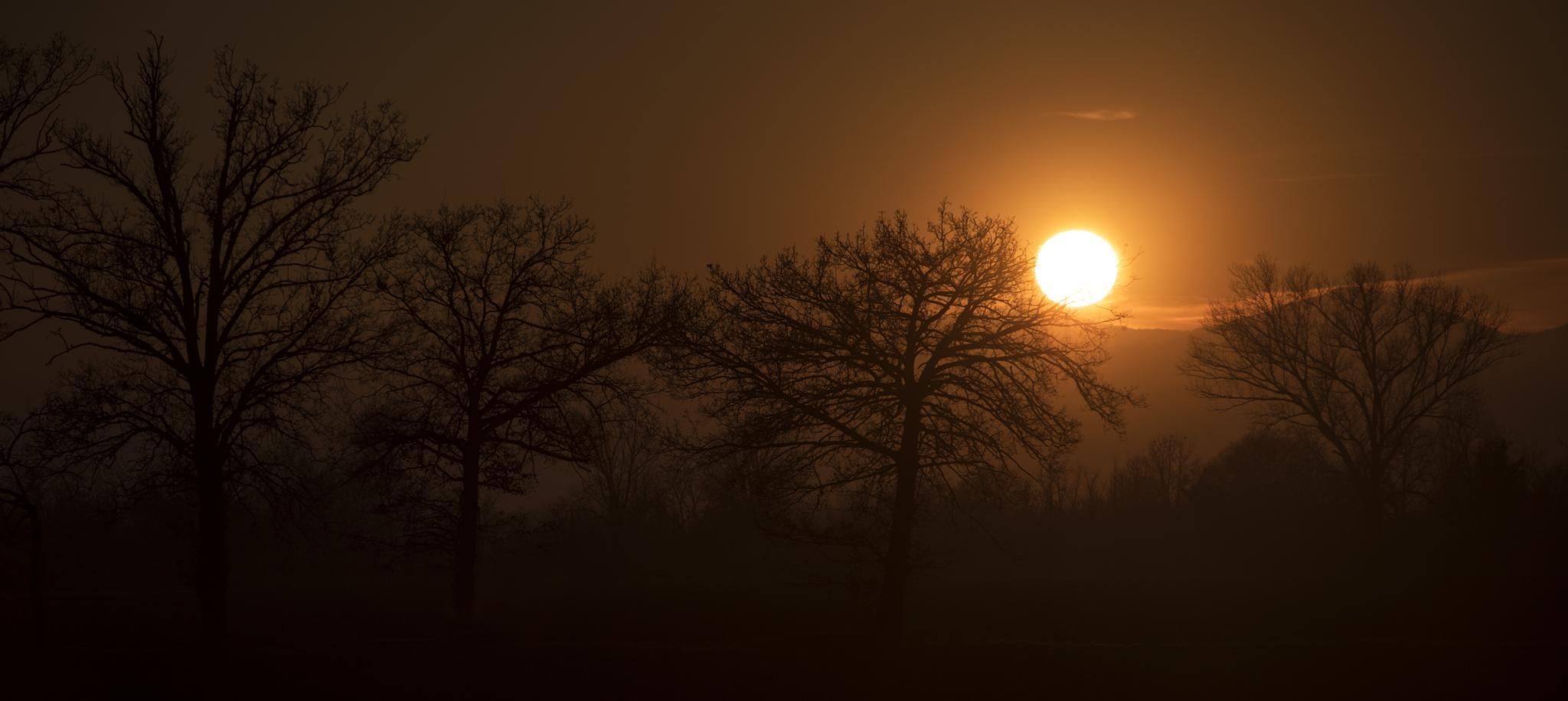 Foggy sunset by roberto.fustinoni.60