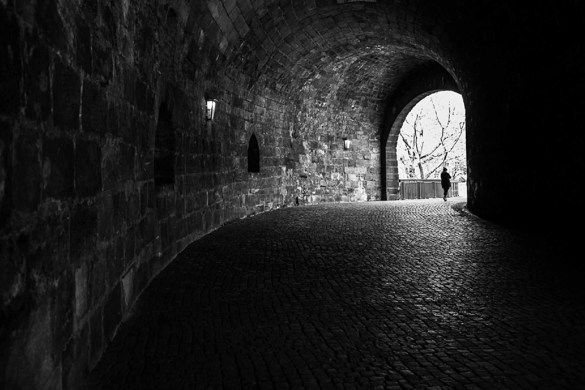 Towards The Light by vitali