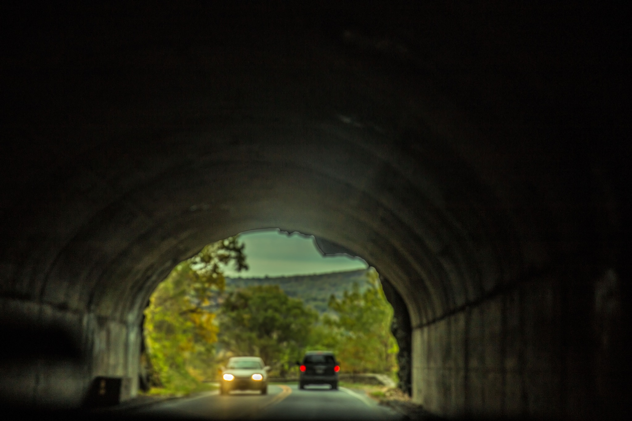 Tunnelvision by Mary Carter