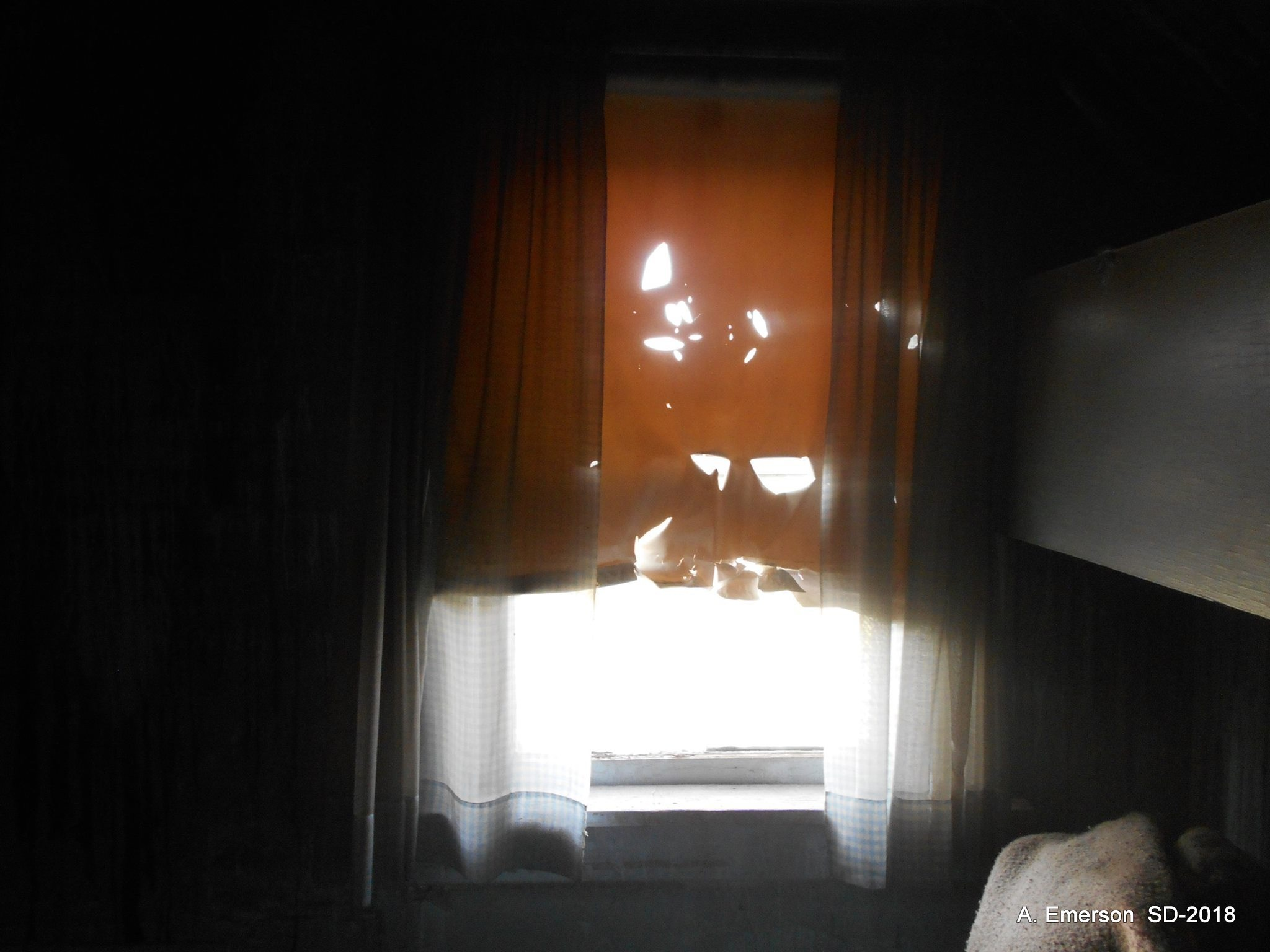 Shade of a Sad Window by Amy Emerson