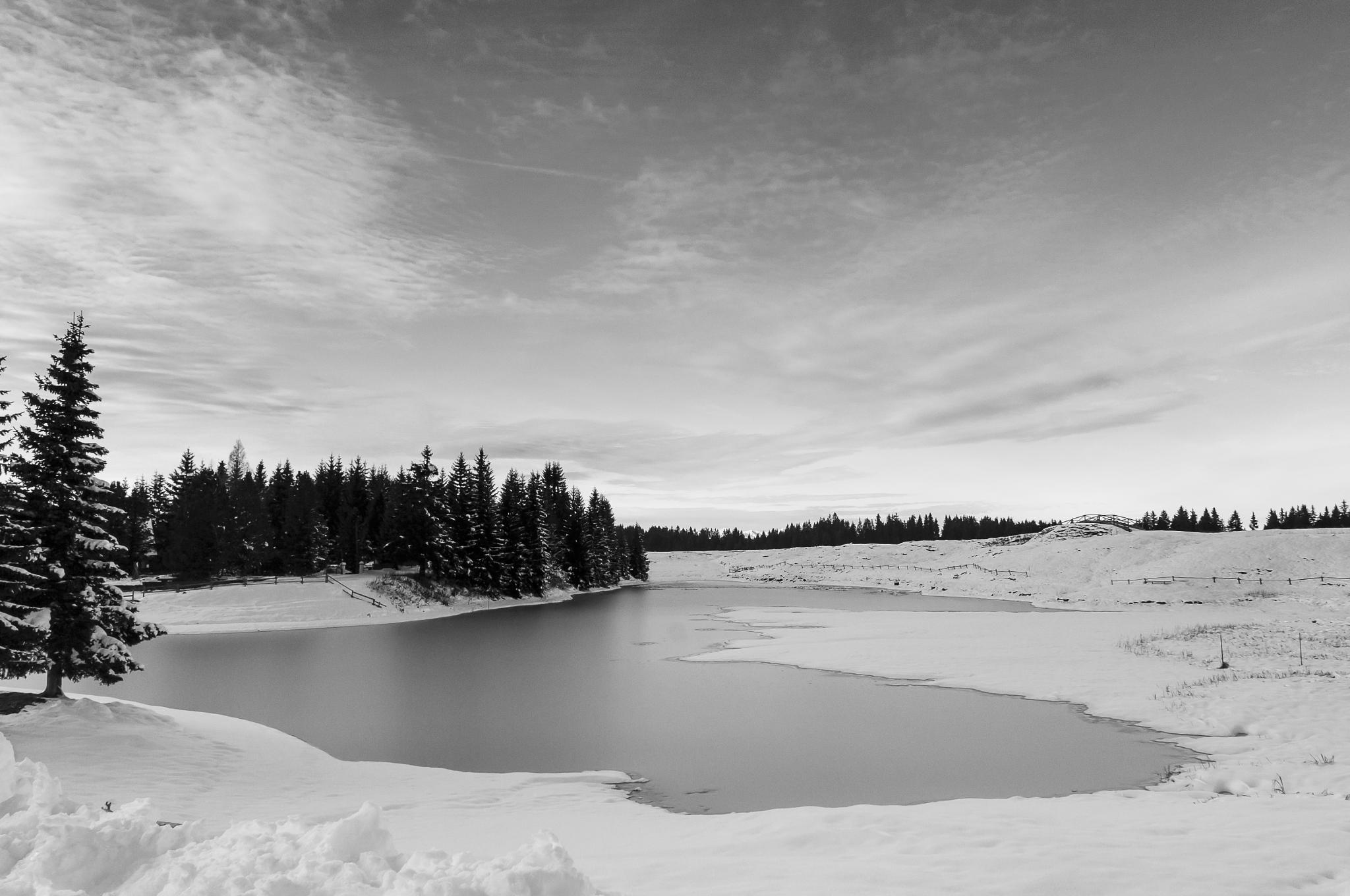 Winter lake by Fabio Drigo