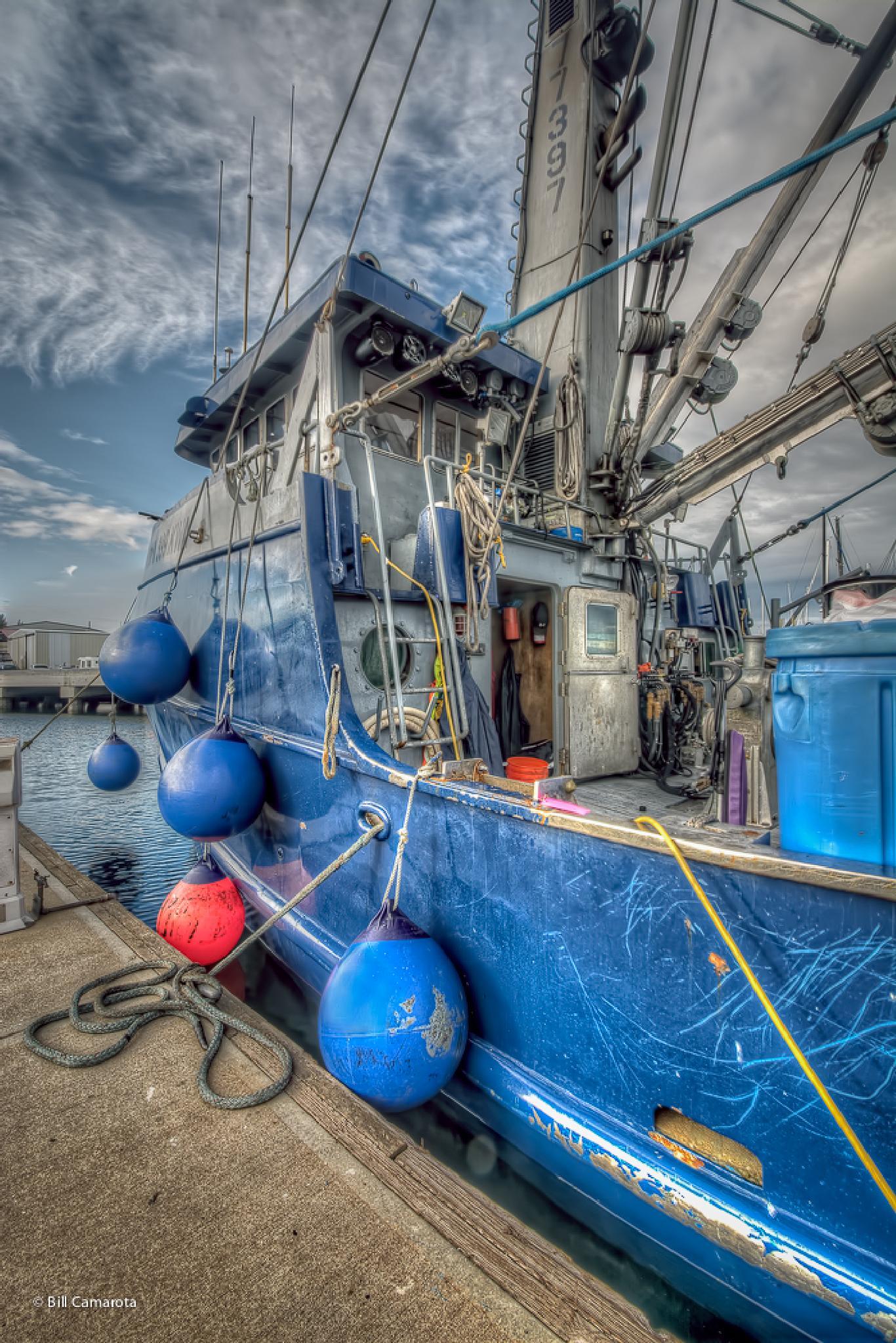 Tethered Tugboat by bill.camarota