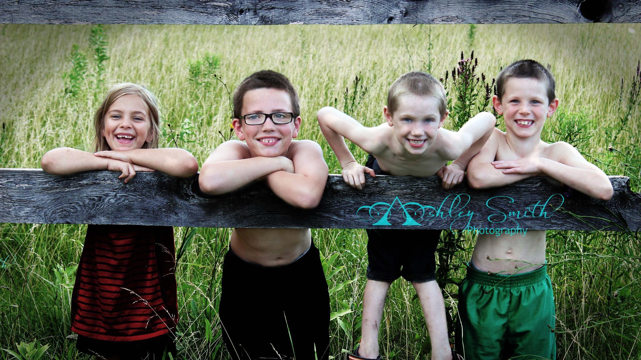 Summer Fence Fun by Ashley Smith