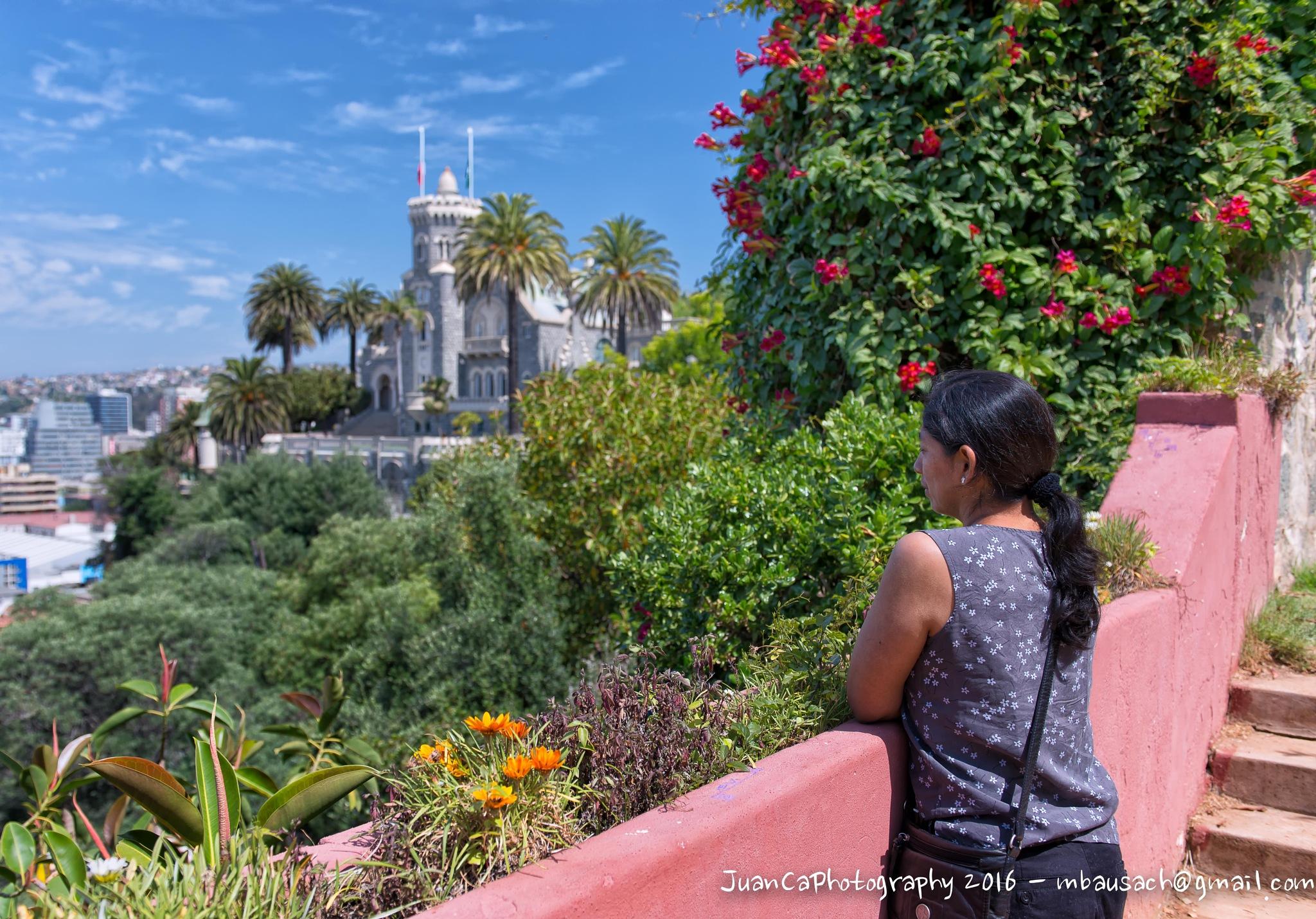 Photo in Architecture #viña del mar #the castle #chile