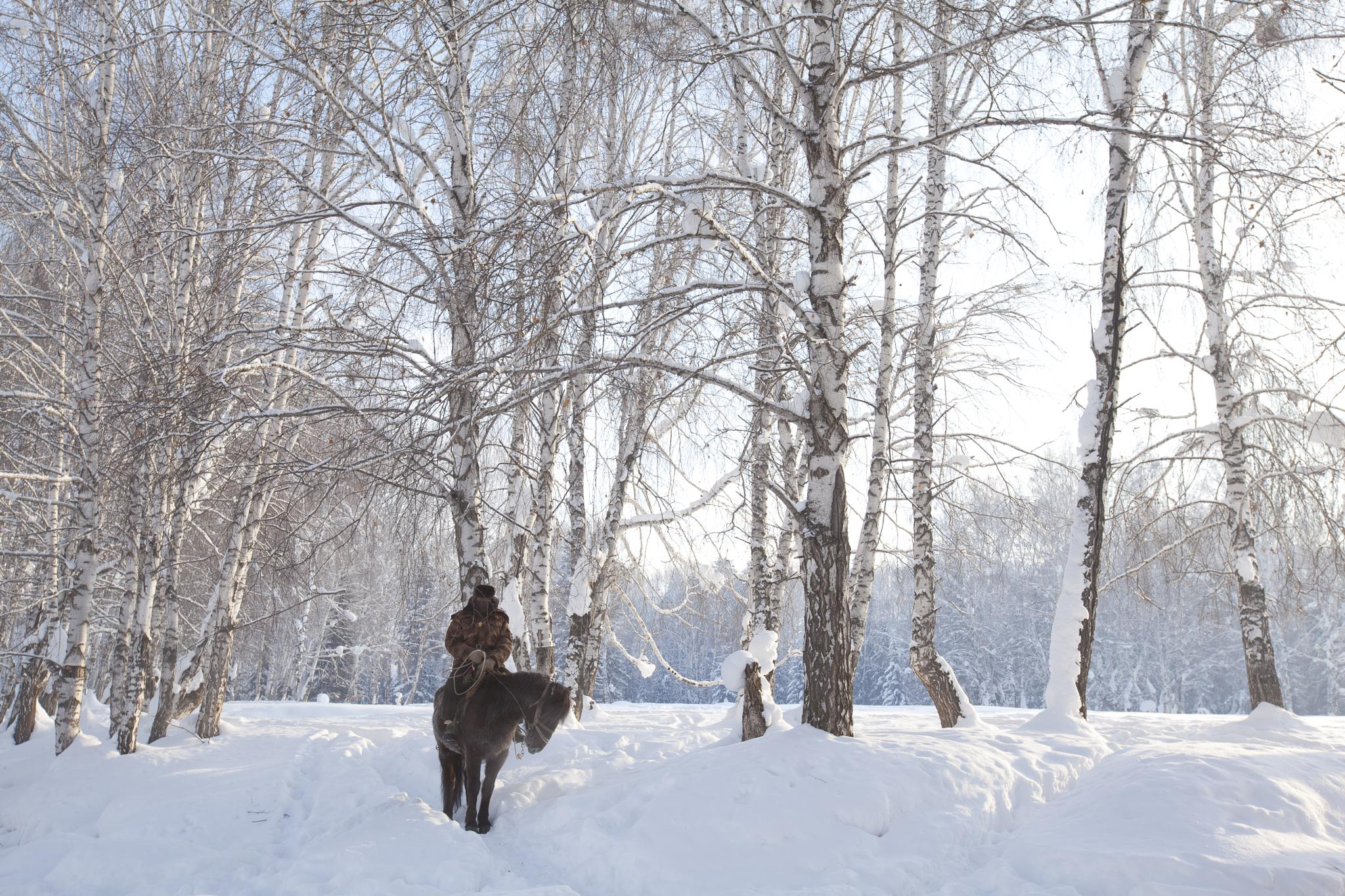 -40 degree rider in Xinjiang  by clement.fung2