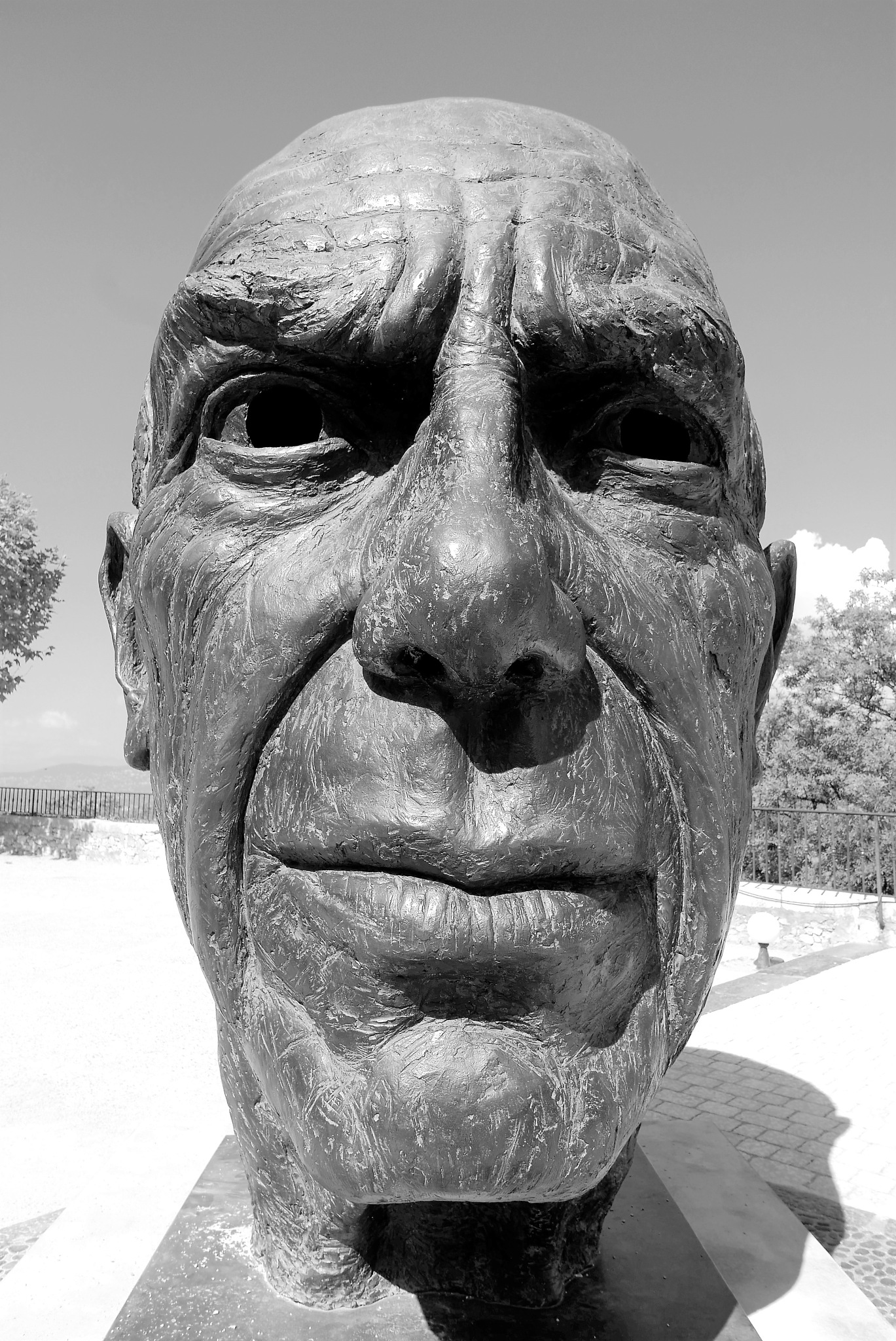 Pablo Picasso by tony cullen