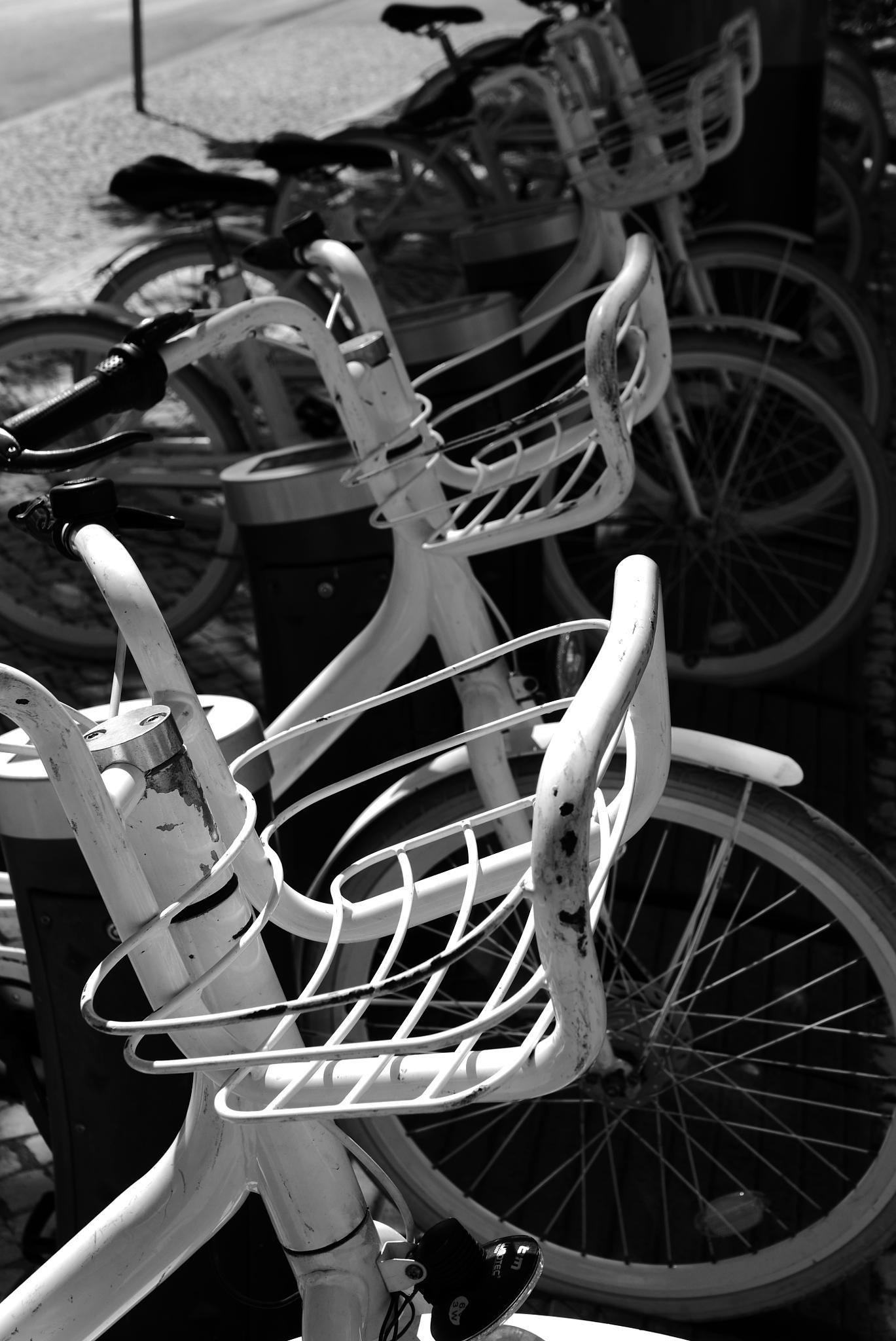 Bike Baskets by tony cullen