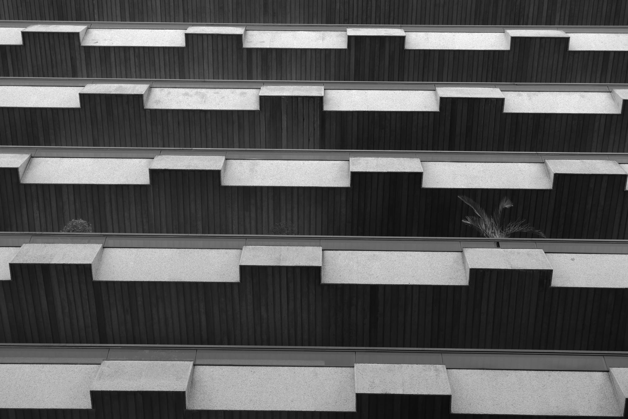 Apartments, Rúa Pablo Morillo, Vigo, Spain by tony cullen