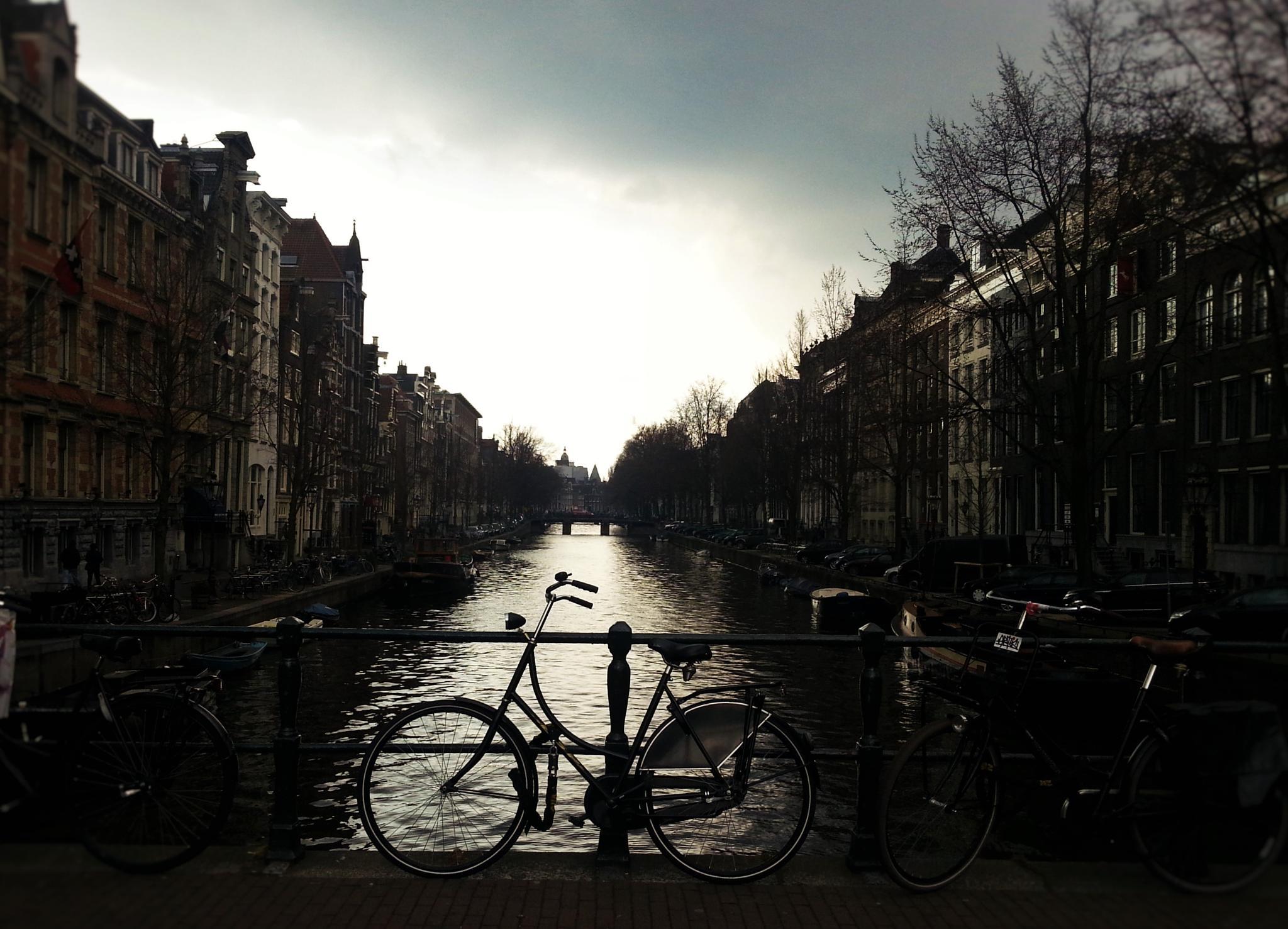 Bicycle in the light by Jeroen van der Mije