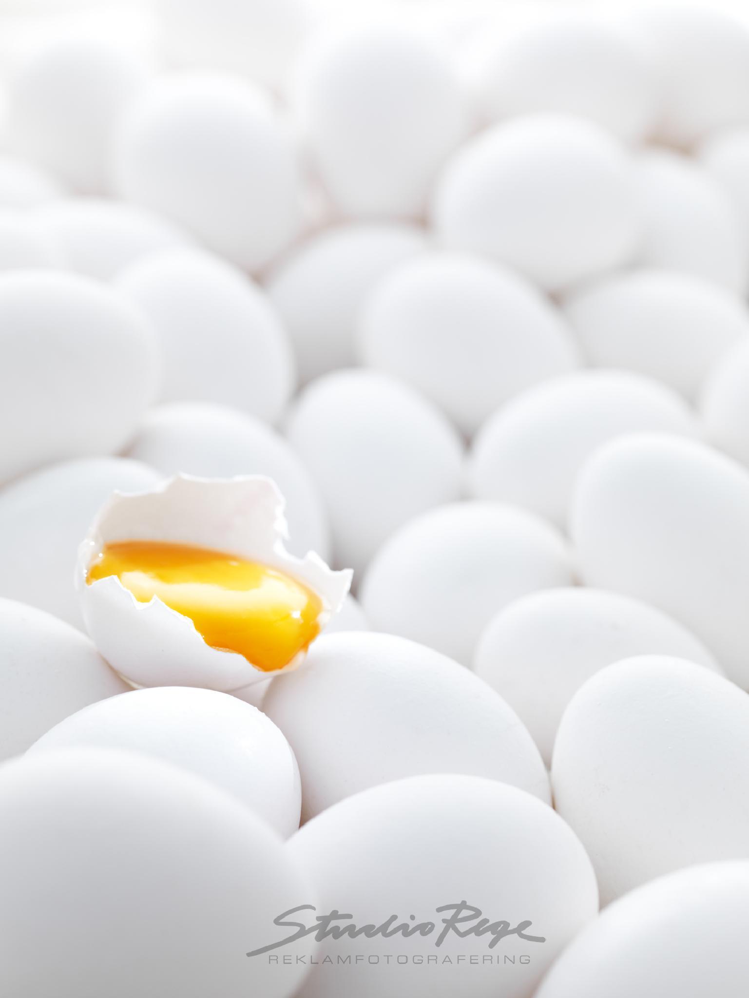 Eggs by fredrik.rege.5