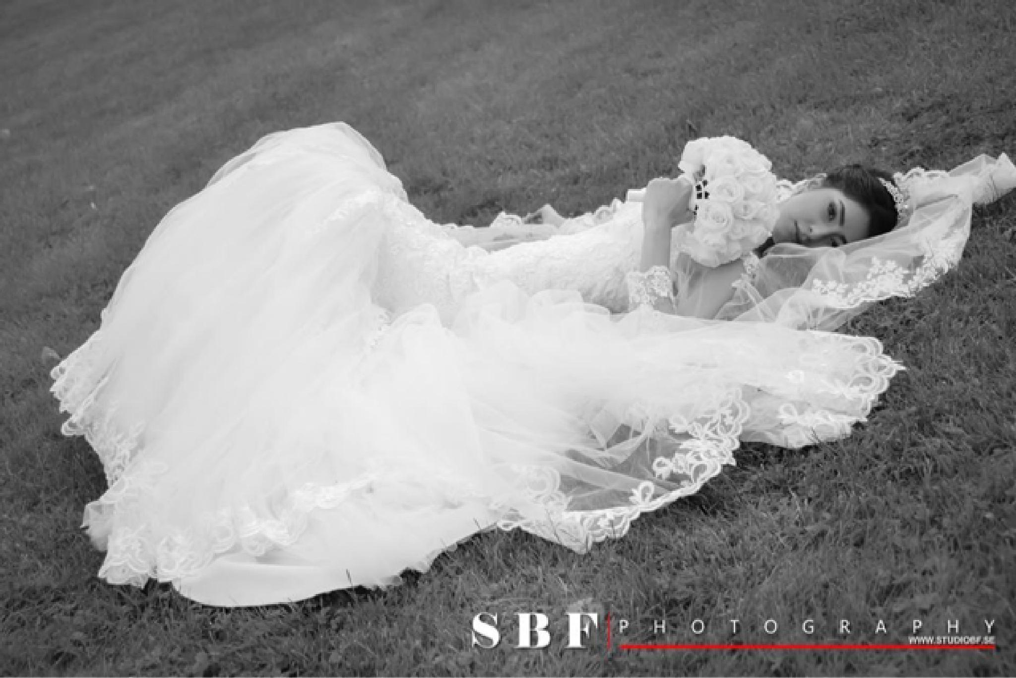 IMG_3590 by Studio bf