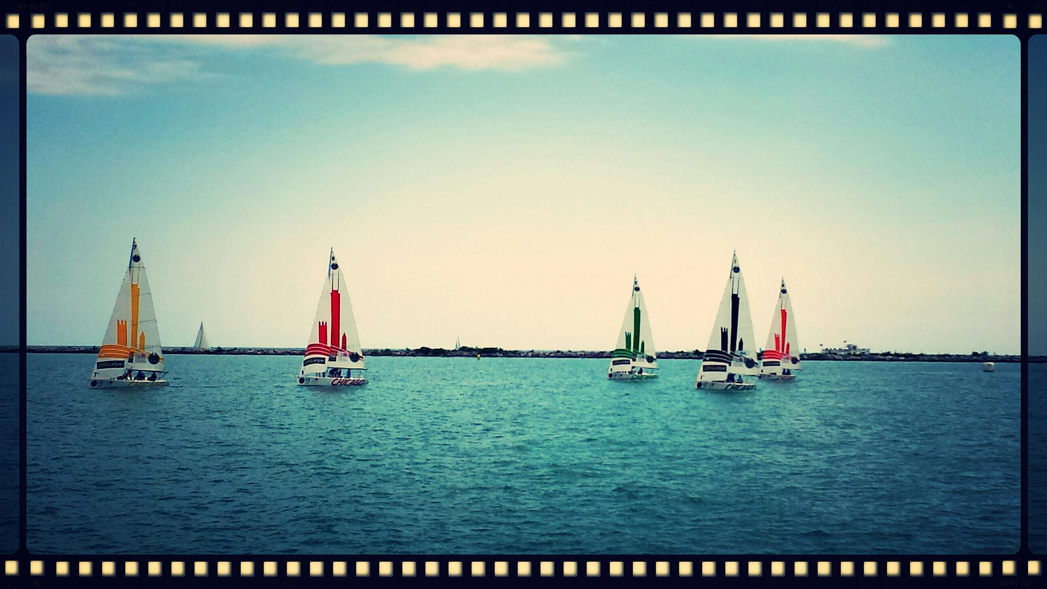 Chicago Harbor Race by mimi.difrancesca